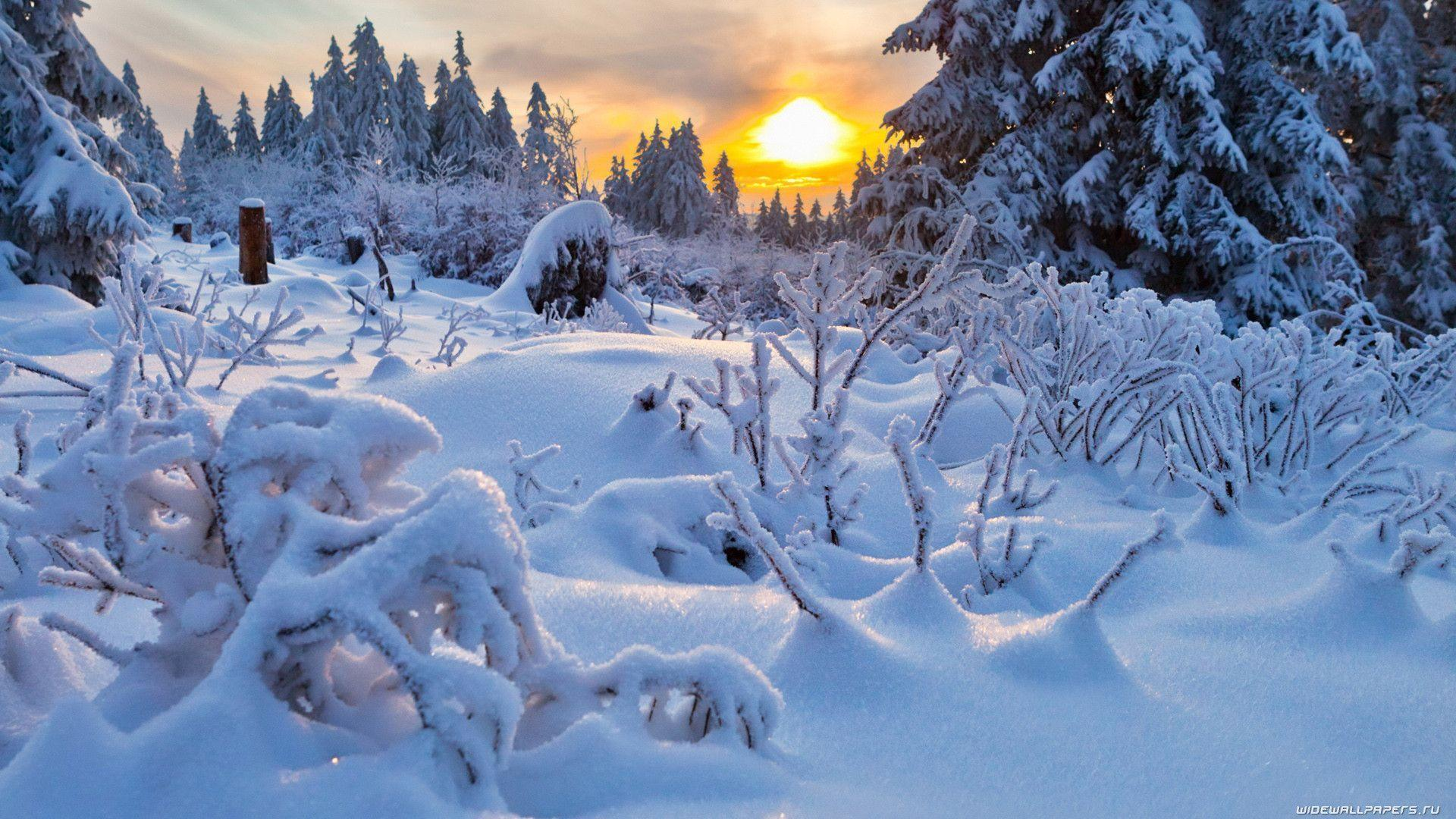 Download Winter Season Natures Nature Landscape Winter Wallpaper ...