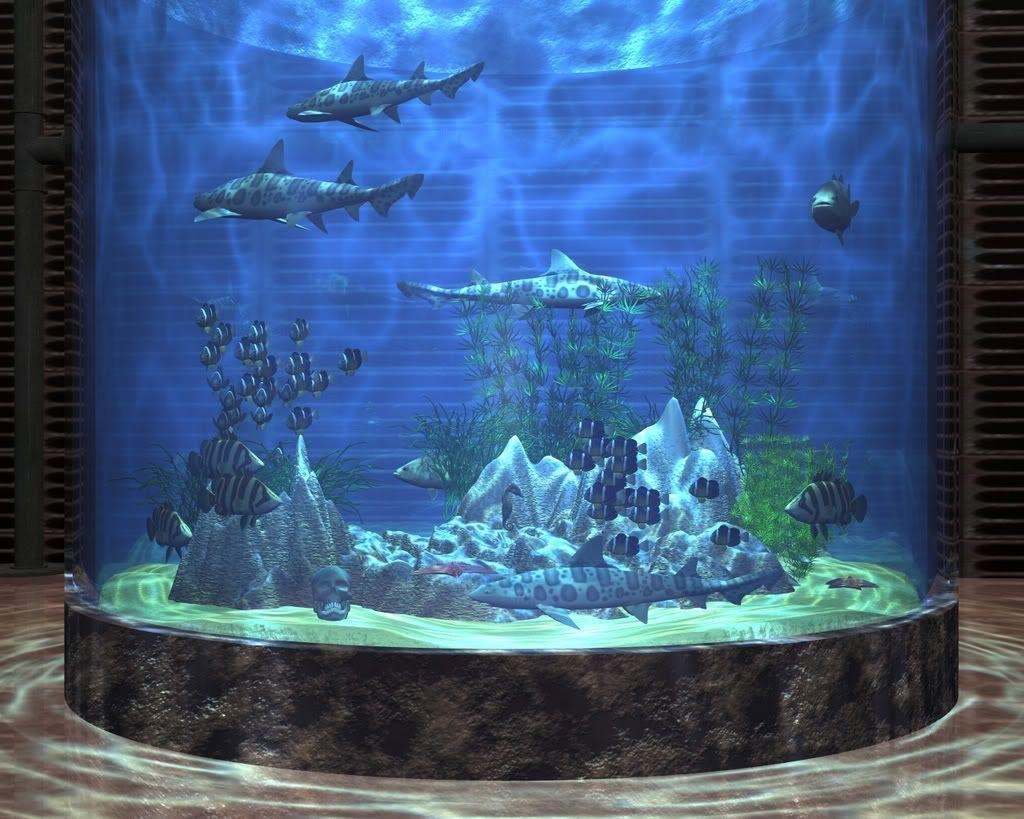 Aquarium Backgrounds 7 Desktop Background | WallFortuner.