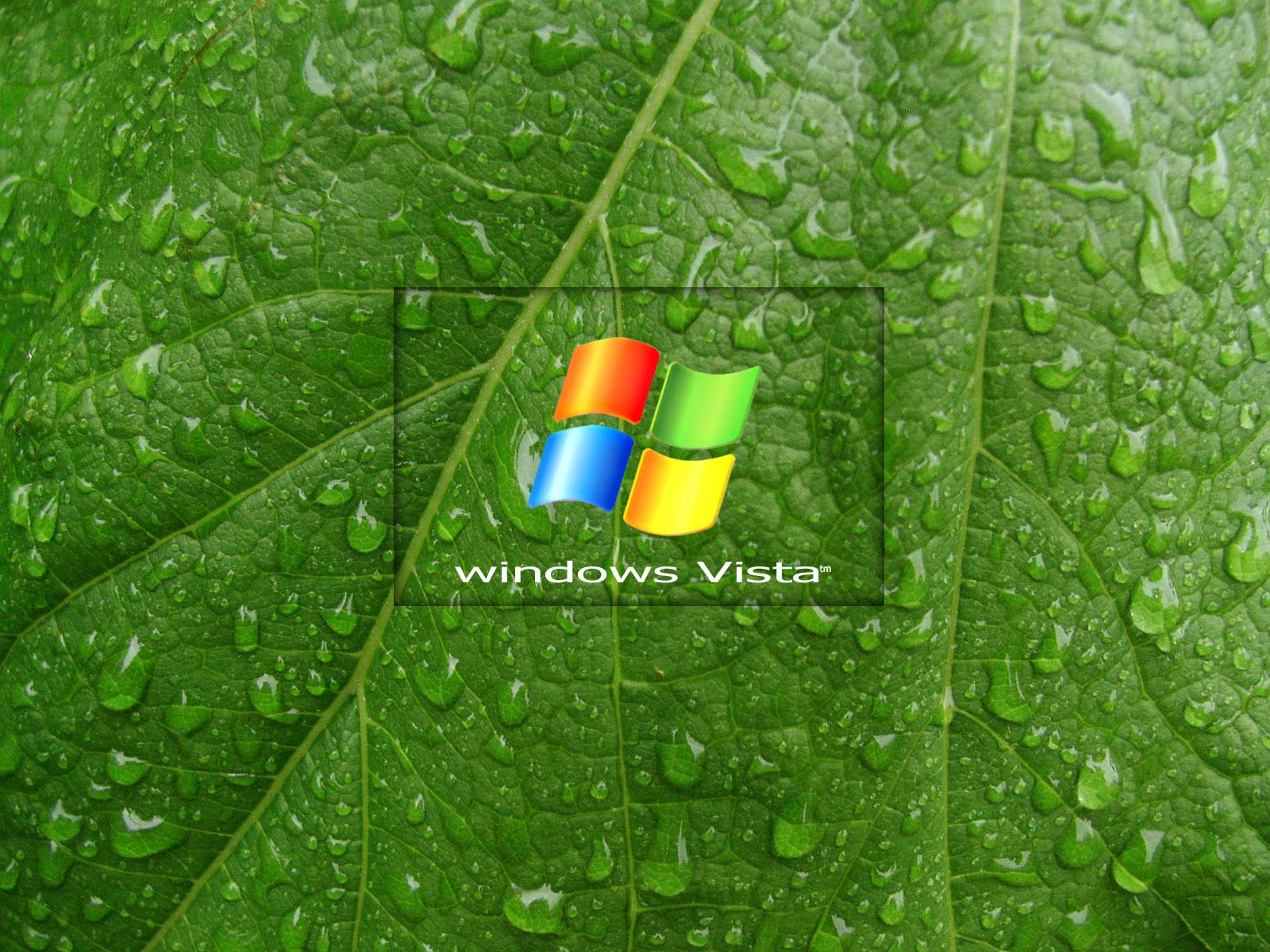windows vista desktop wallpaper www