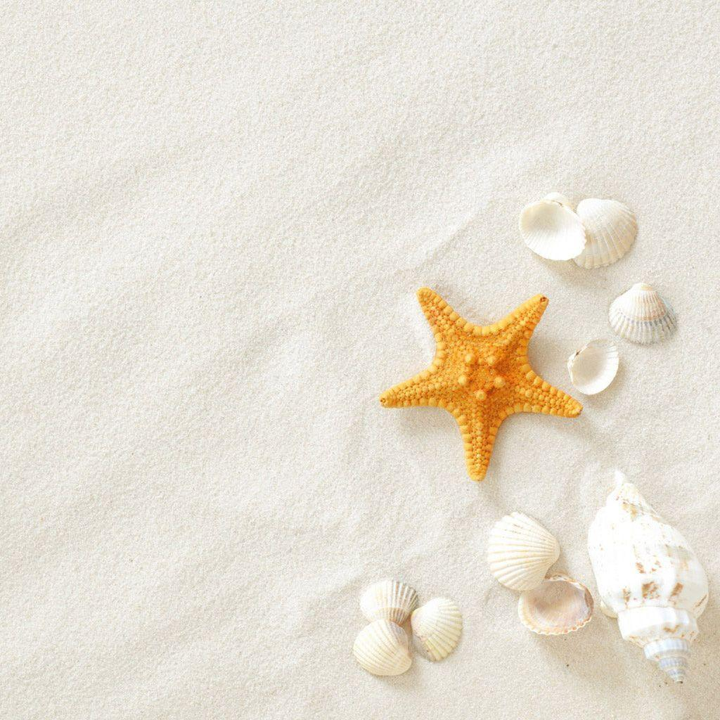 white sand wallpaper - photo #4