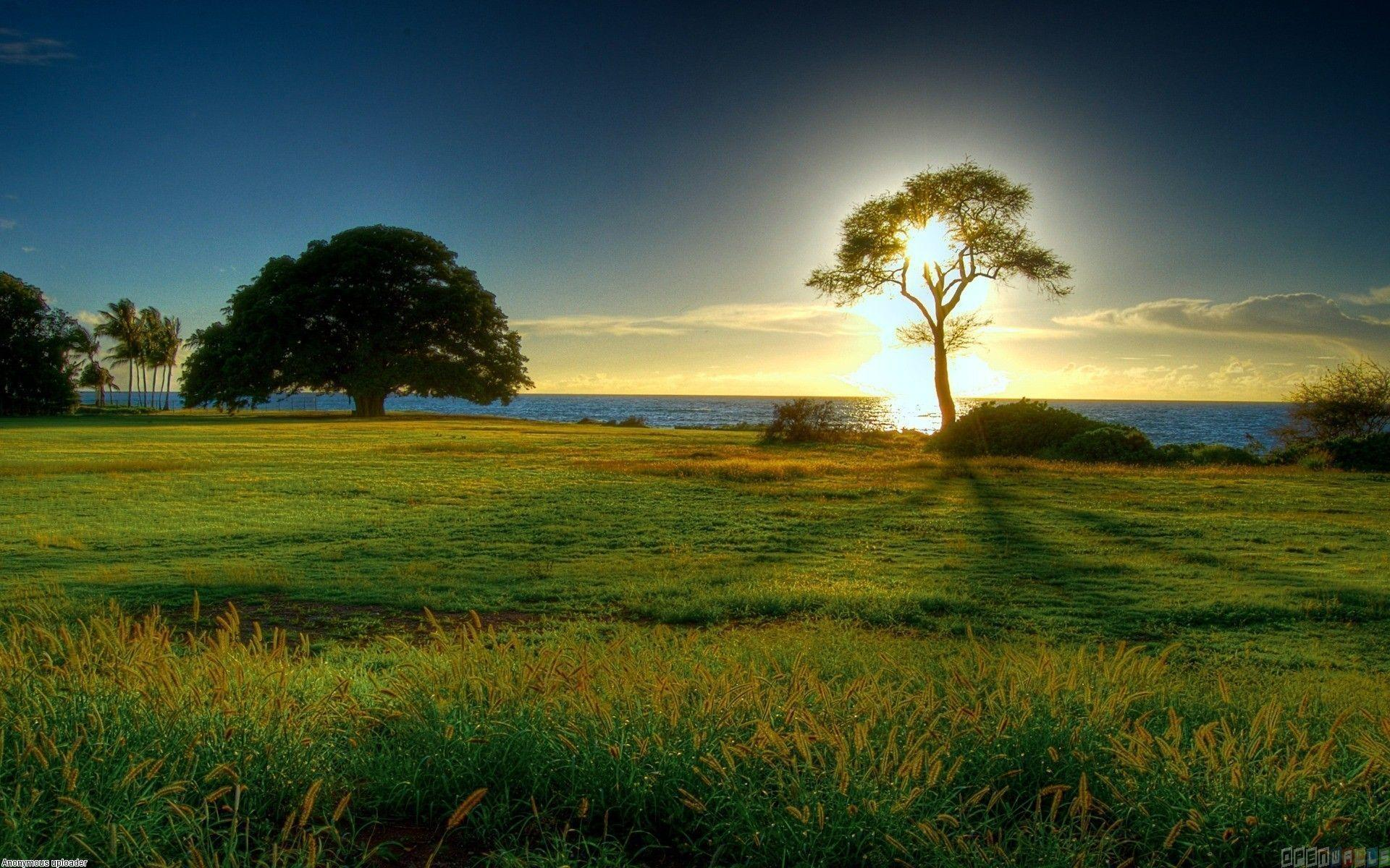 Sunny Day Wallpapers Wallpaper Cave