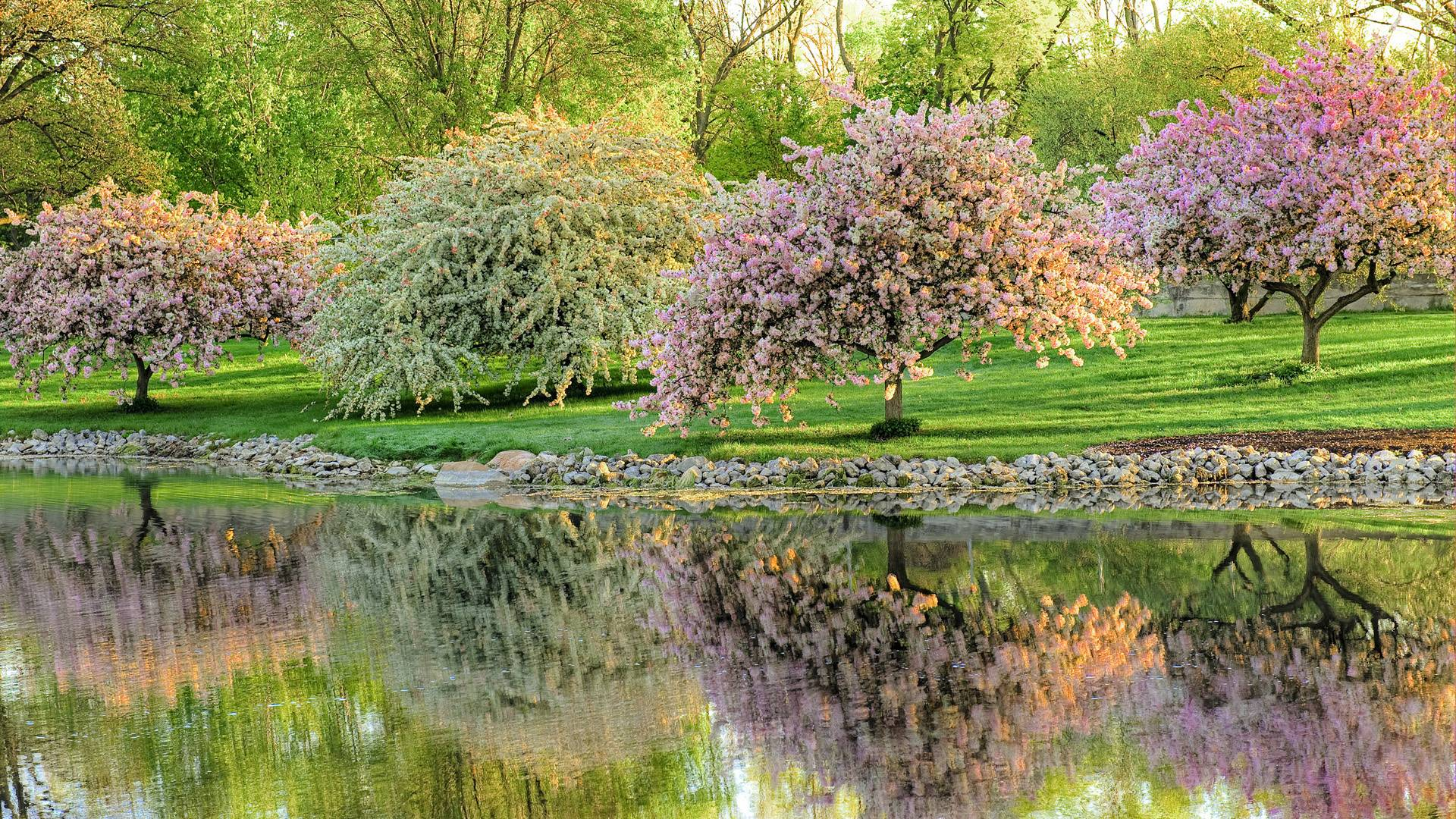 Spring time wallpapers wallpaper cave - Backgrounds springtime ...