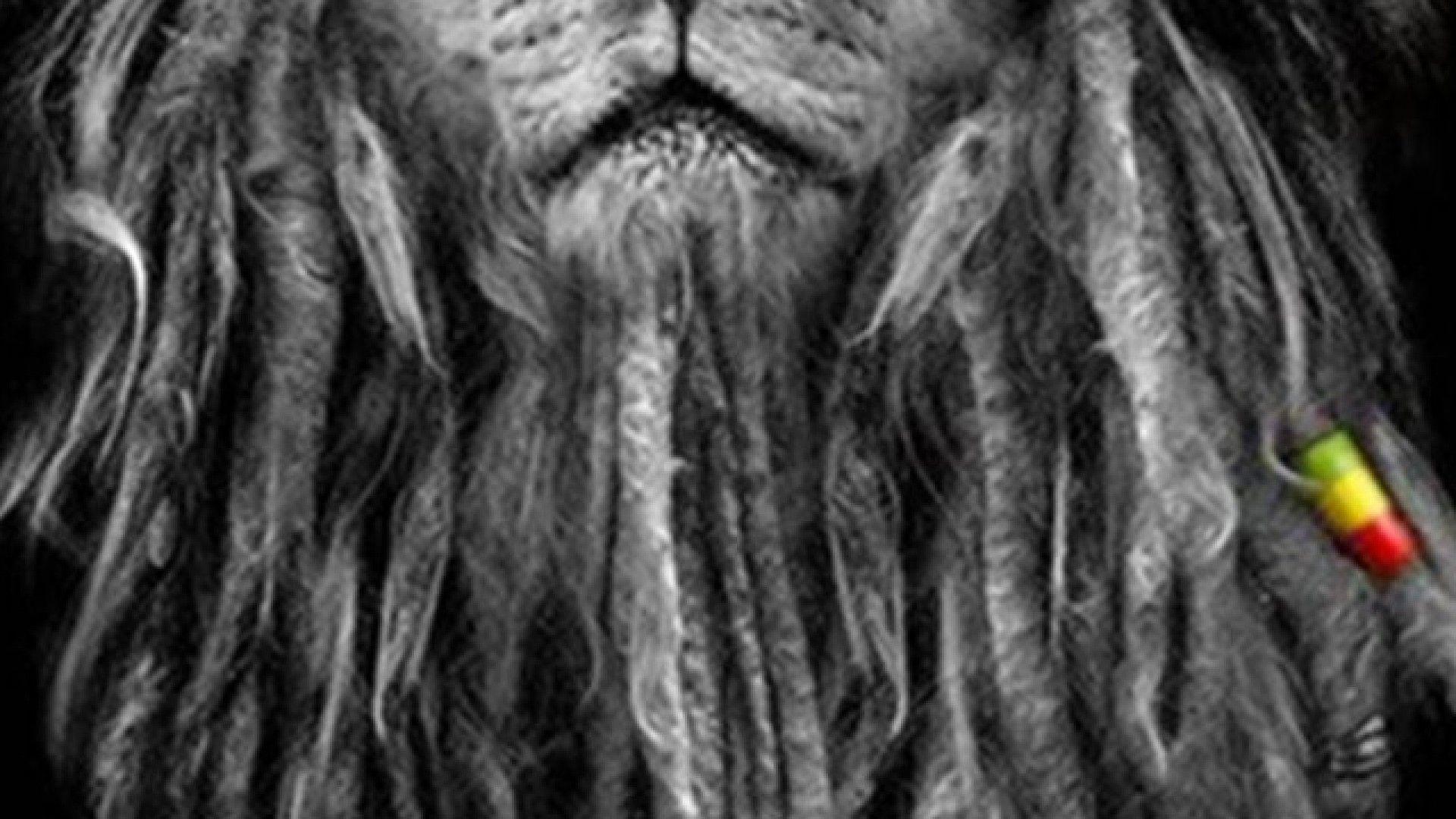 rastafarian lion wallpaper - photo #16