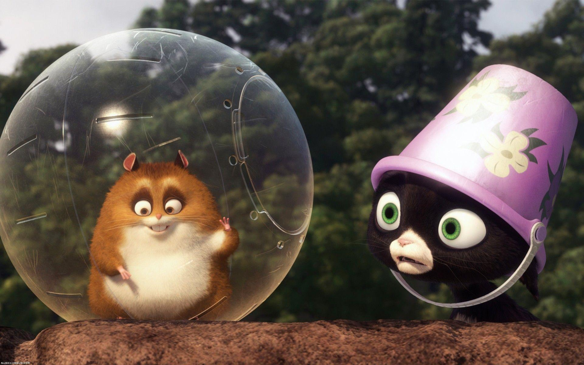 Hamster Free Movies
