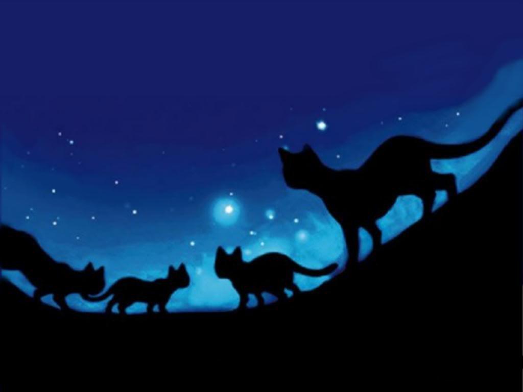 Image result for warrior cats wallpaper