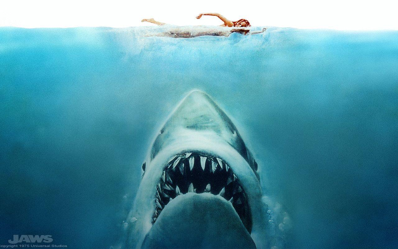 jaws background Jaws is a 1975 american thriller film directed by steven spielberg and based on peter benchley's 1974 novel of the same name in it, a giant man-eating great white.