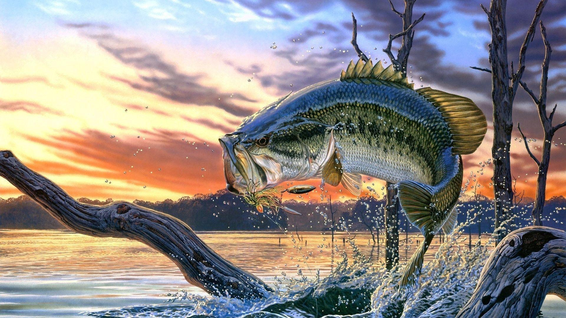 Largemouth Bass Backgrounds - Wallpaper Cave