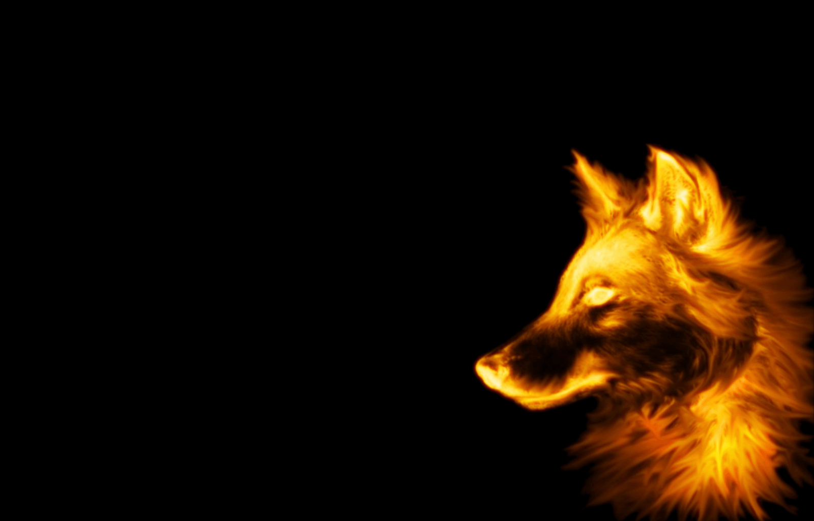 745 Wolf Wallpapers