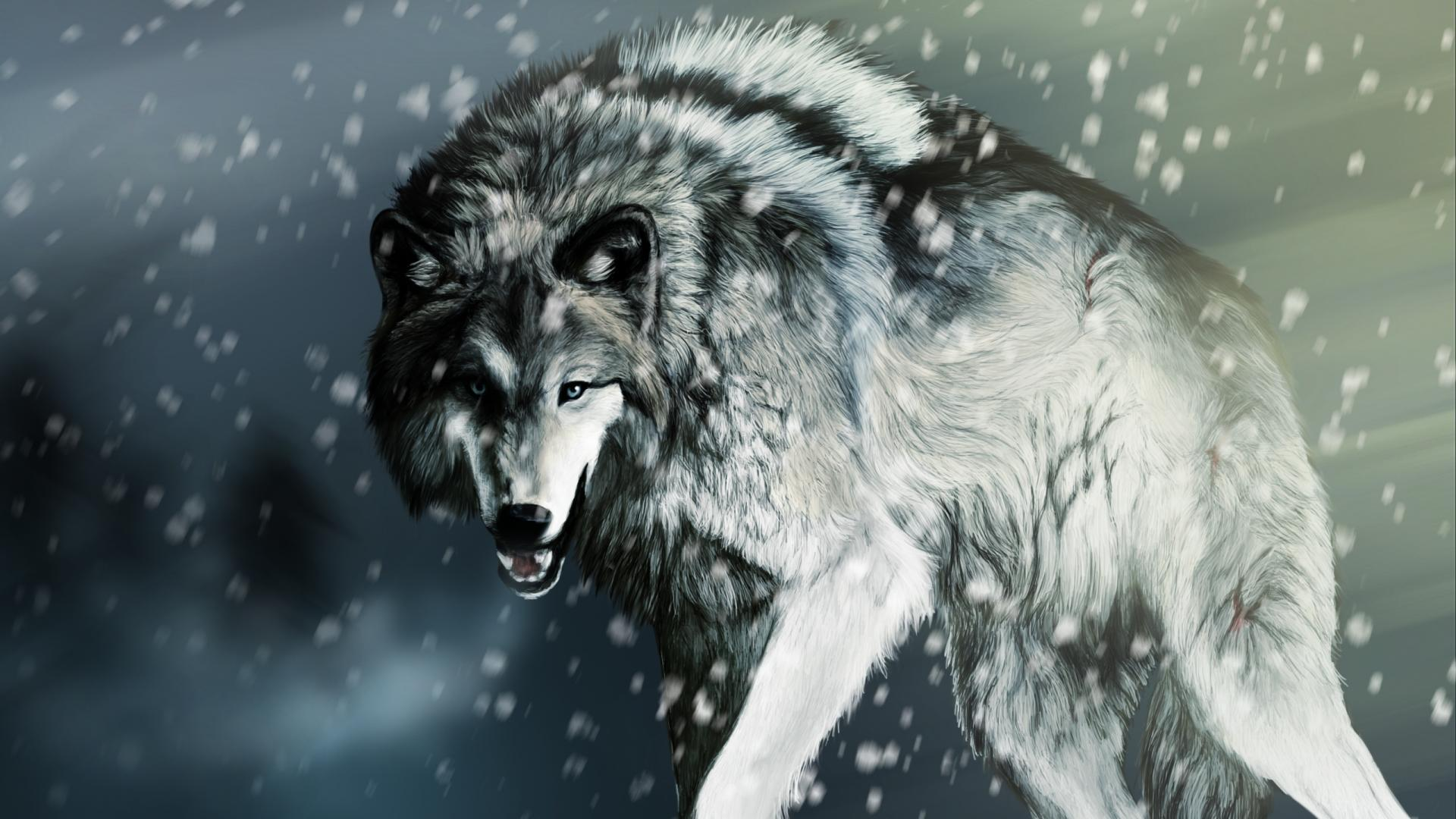 Image For > Snow Wolves Wallpapers