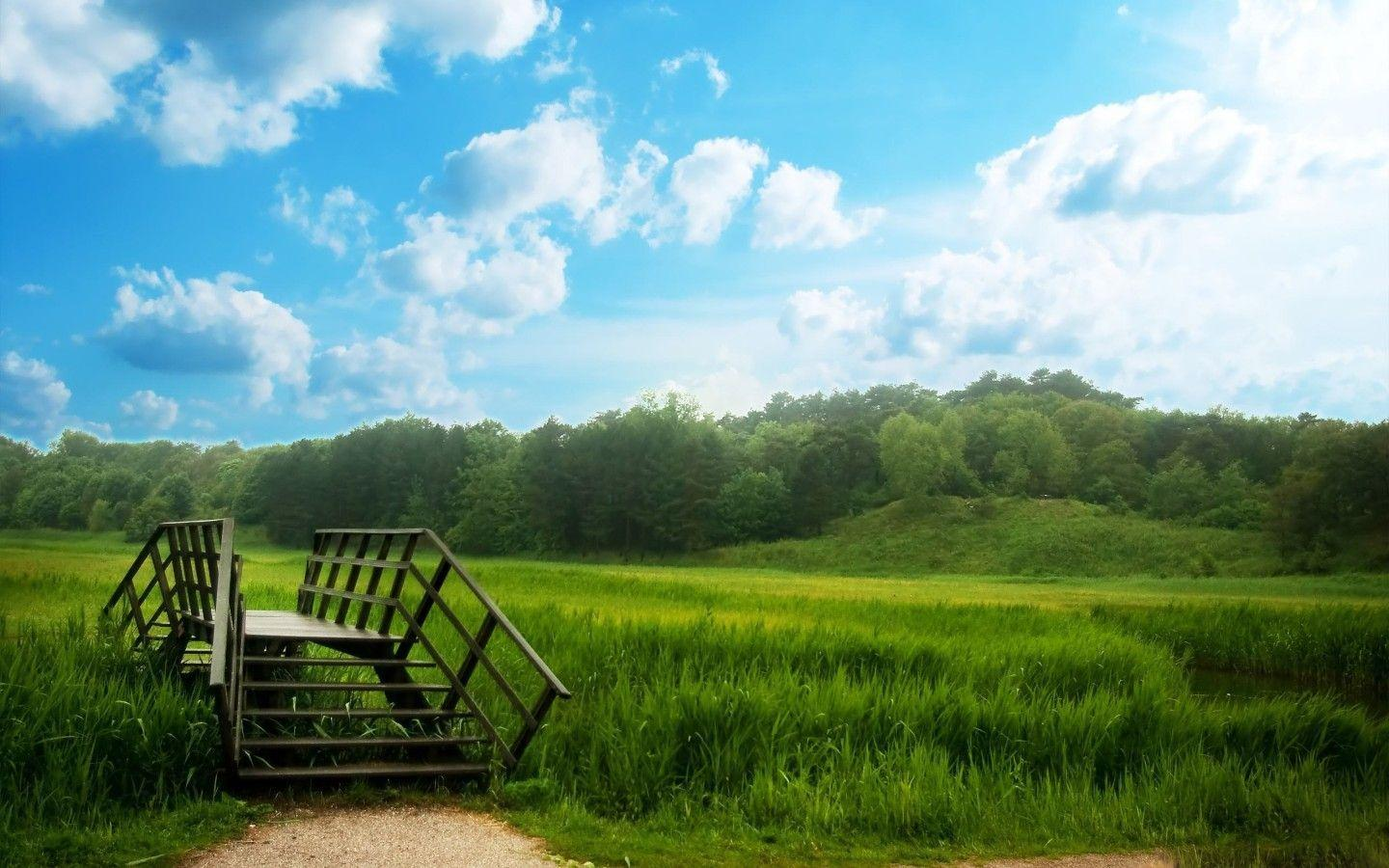 Summer Nature Wallpapers