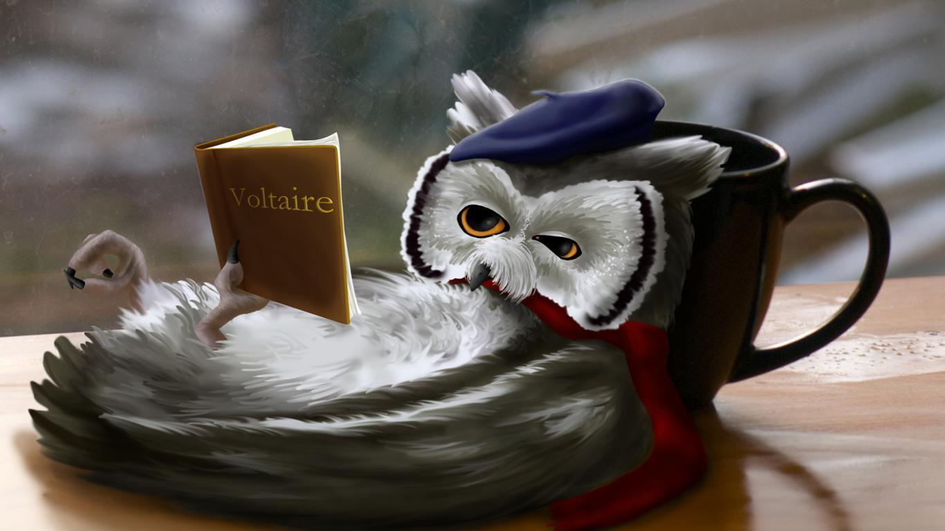 owl humor reading - photo #19