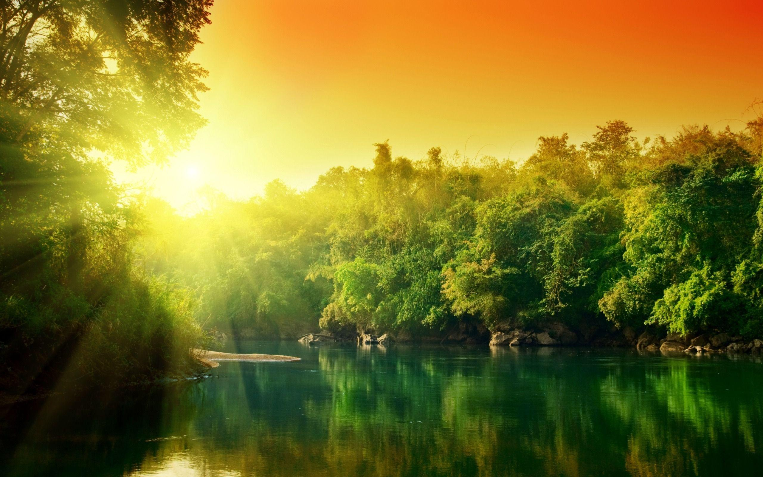 Amazon Rainforest Full HD Wallpapers Wallpapers