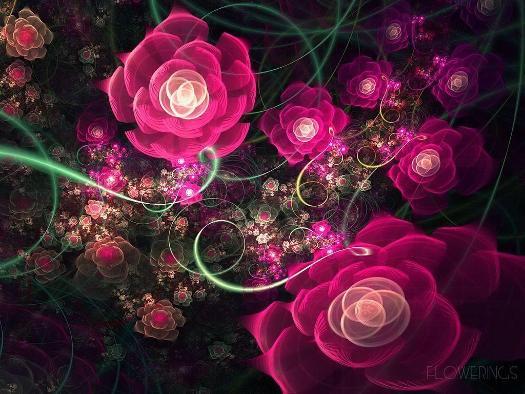 Beautifull Rose Garden Wallpapers : WarmOjo