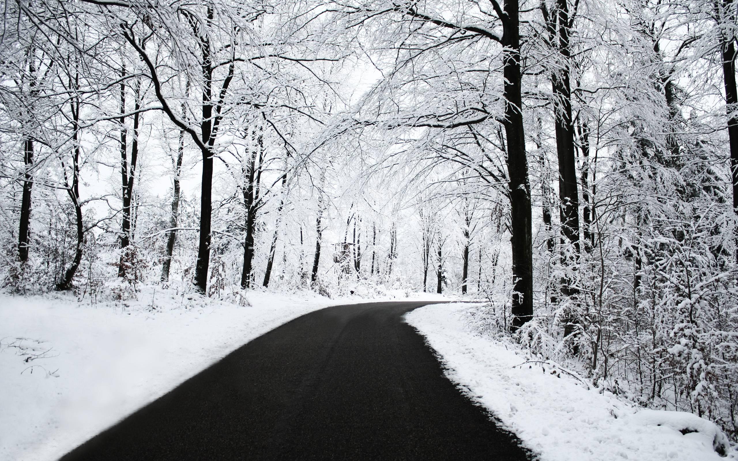 Free Snowfall Wallpapers