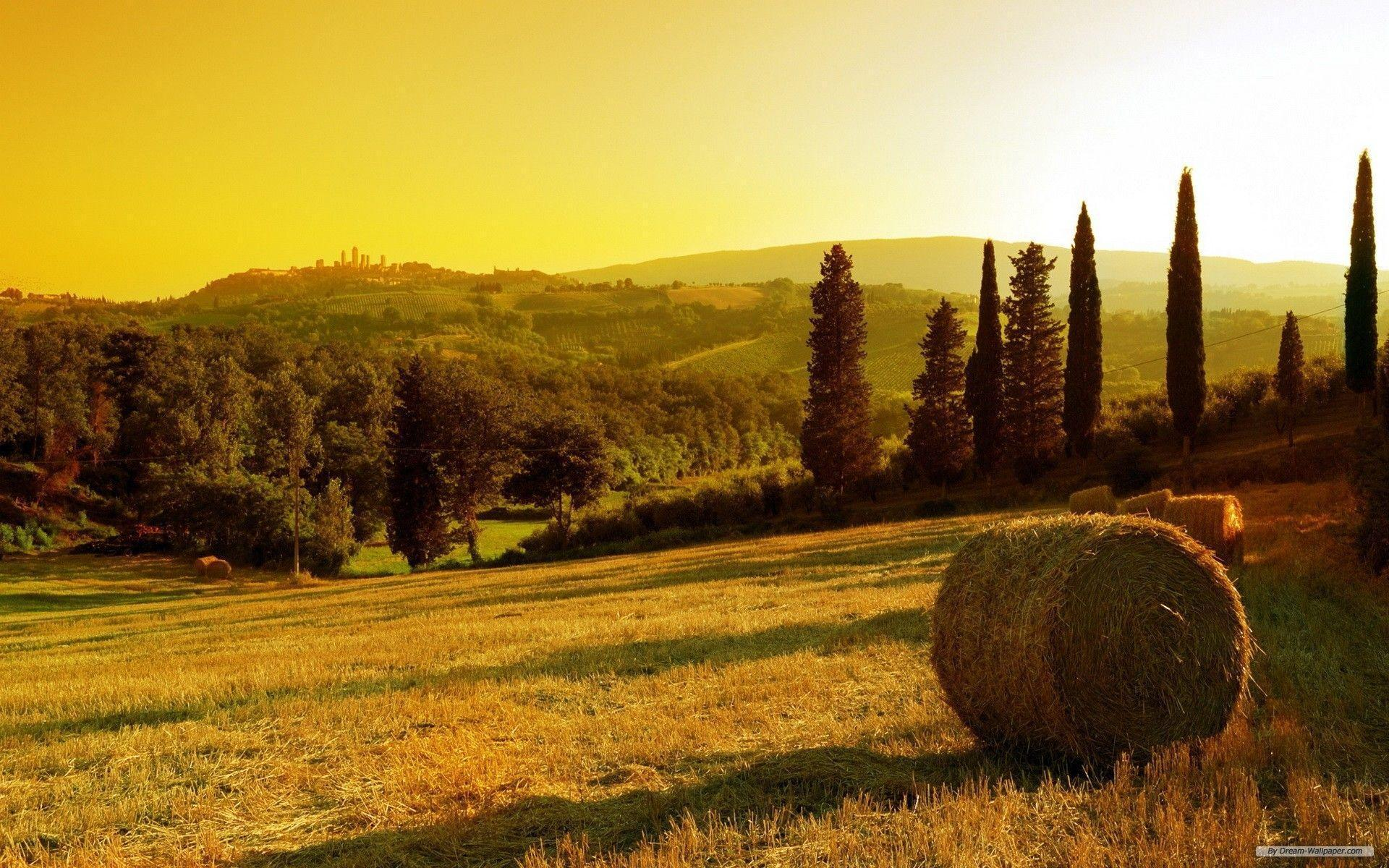 Free Wallpaper - Free Nature wallpaper - Tuscany wallpaper ...
