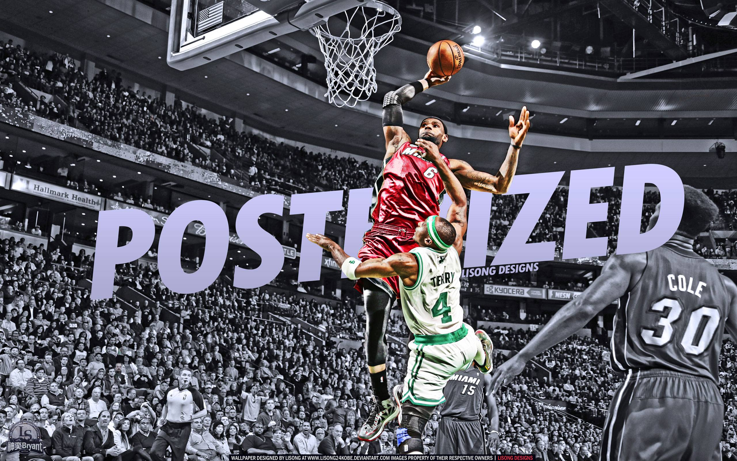 LeBron James Dunk Over Jason Terry 2560x1600 Wallpapers