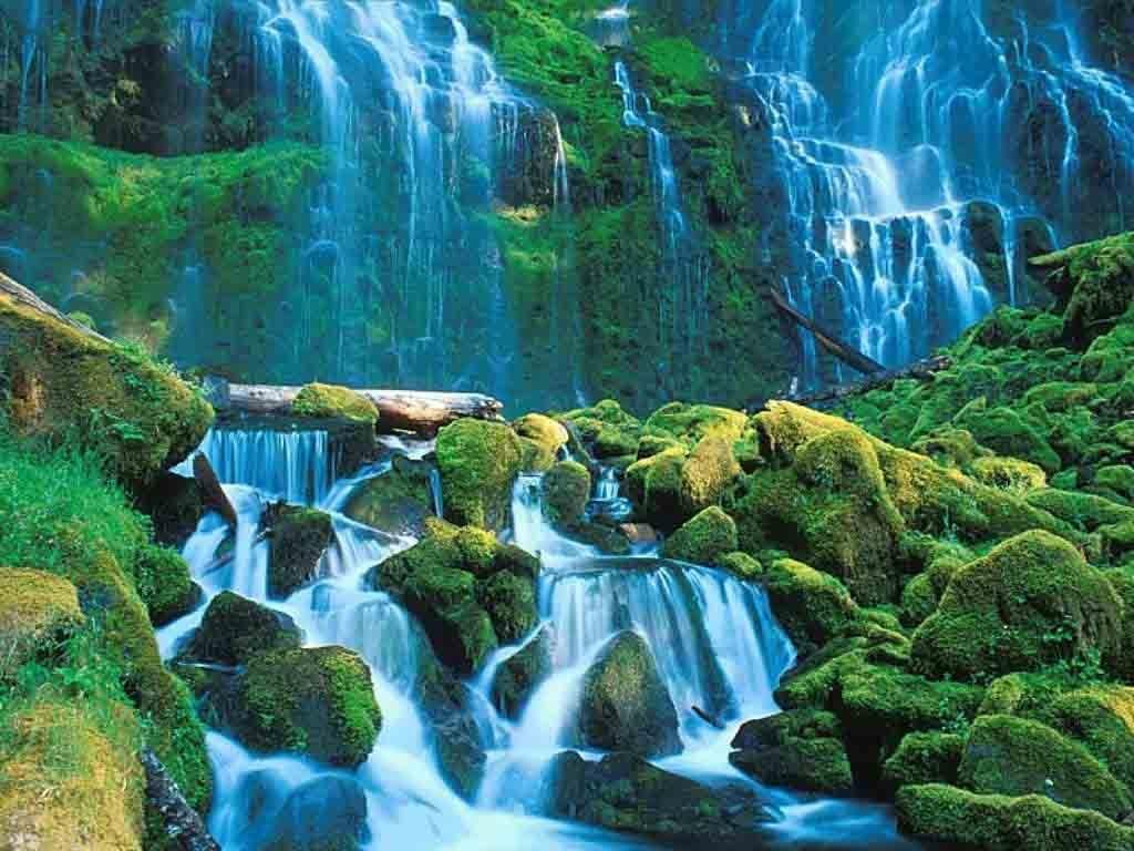 Wallpaper download nature beauty - Beauty Nature Wallpapers And Pictures 19 Items Page 1 Of 1