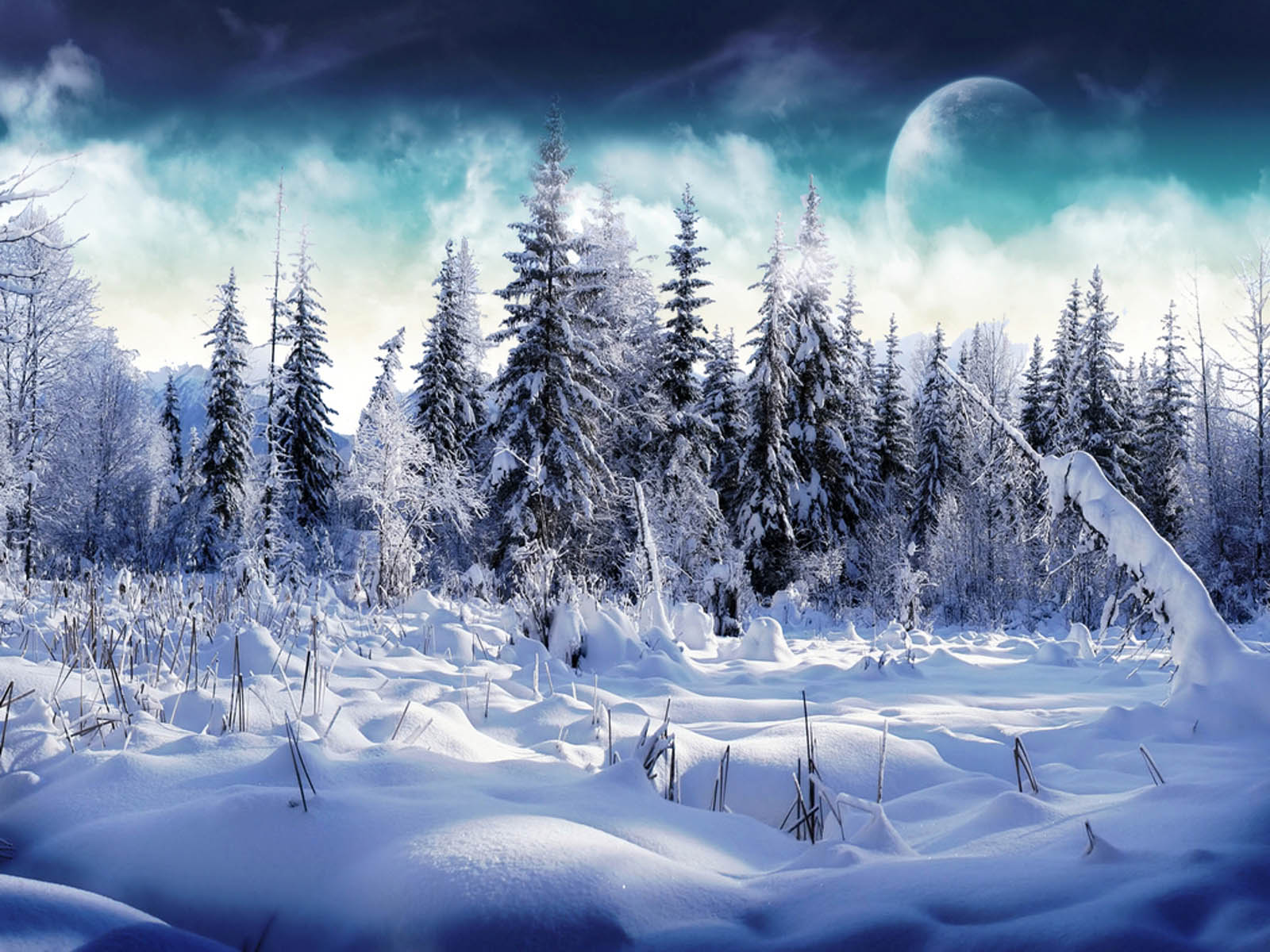 Snow Desktop Wallpapers and Backgrounds