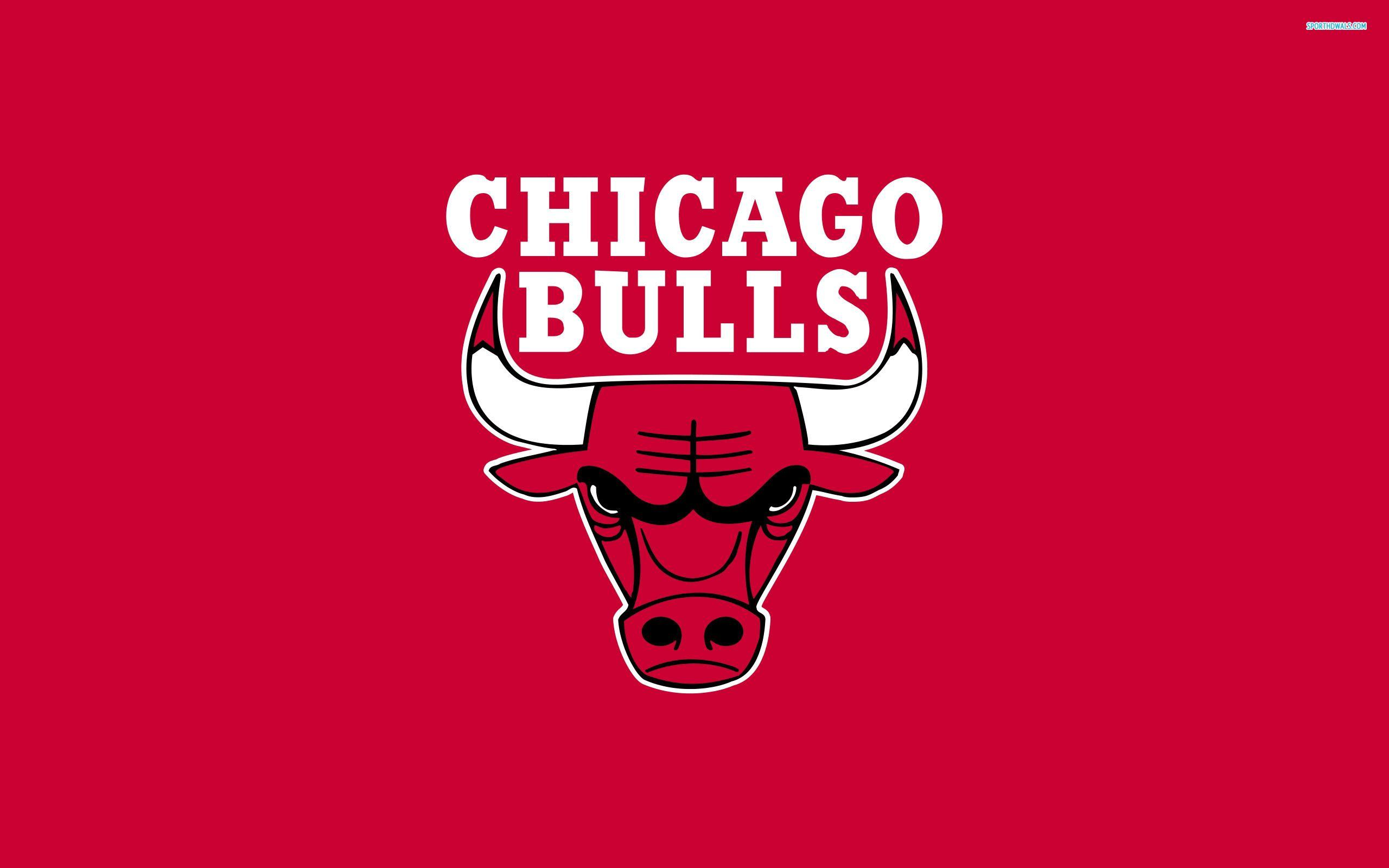2013 Chicago Bulls Wallpaper HD 5 24508 Images HD Wallpapers ...
