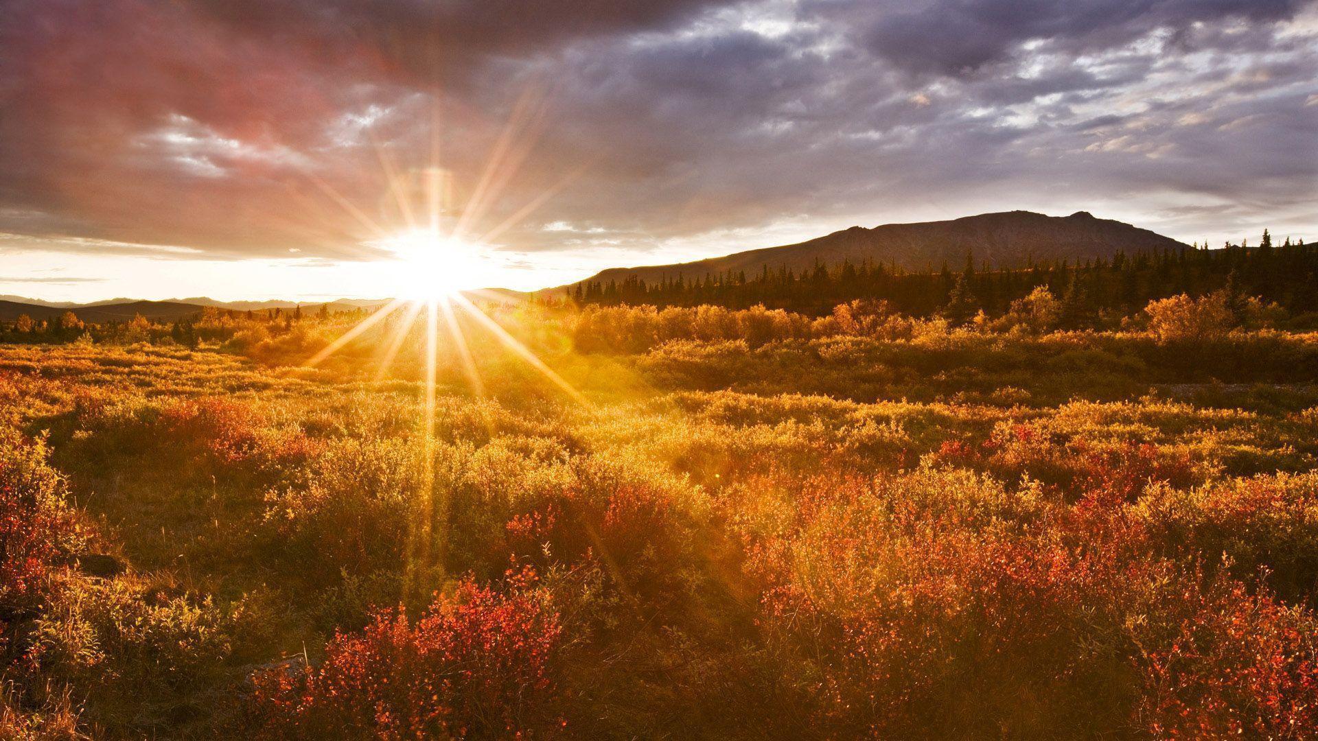 Amazing Sunrise Wallpaper   Wallpaper Download