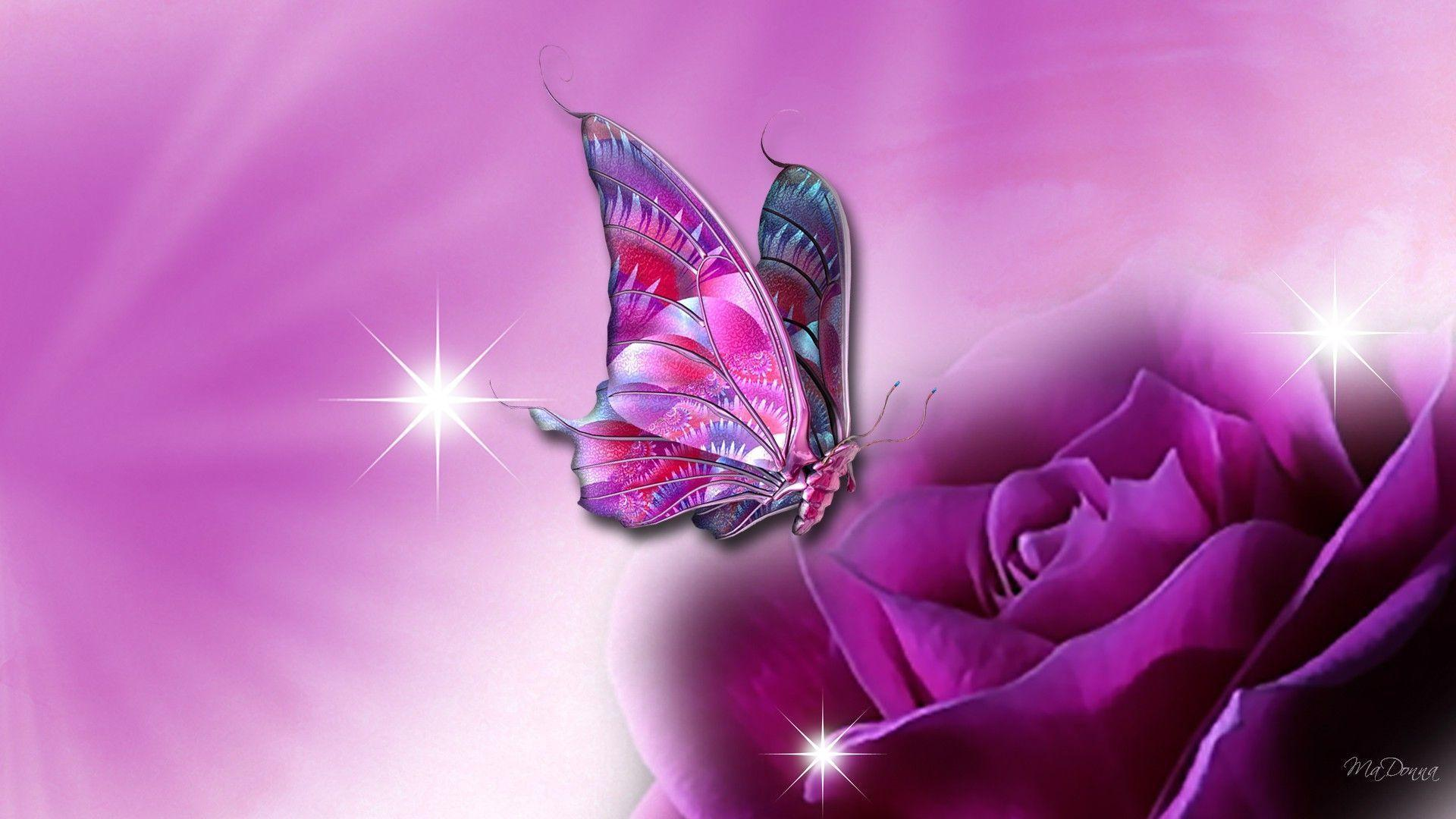 3D Butterfly Wallpapers  Wallpaper Cave