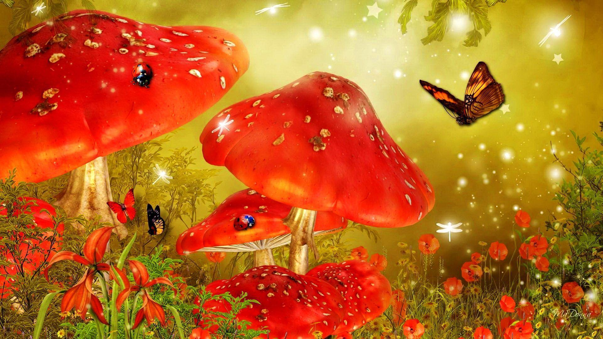 fairy tale wallpapers wallpaper cave