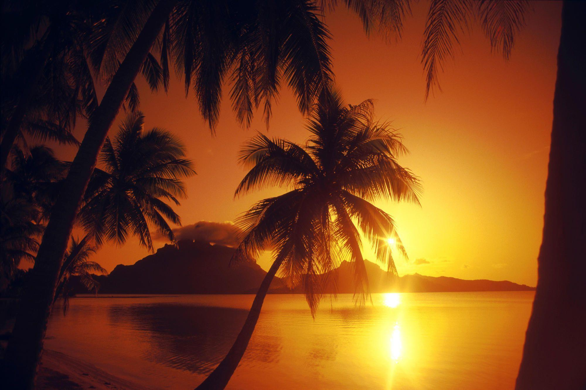 Beach Sunset Desktop Wallpapers - Wallpaper Cave