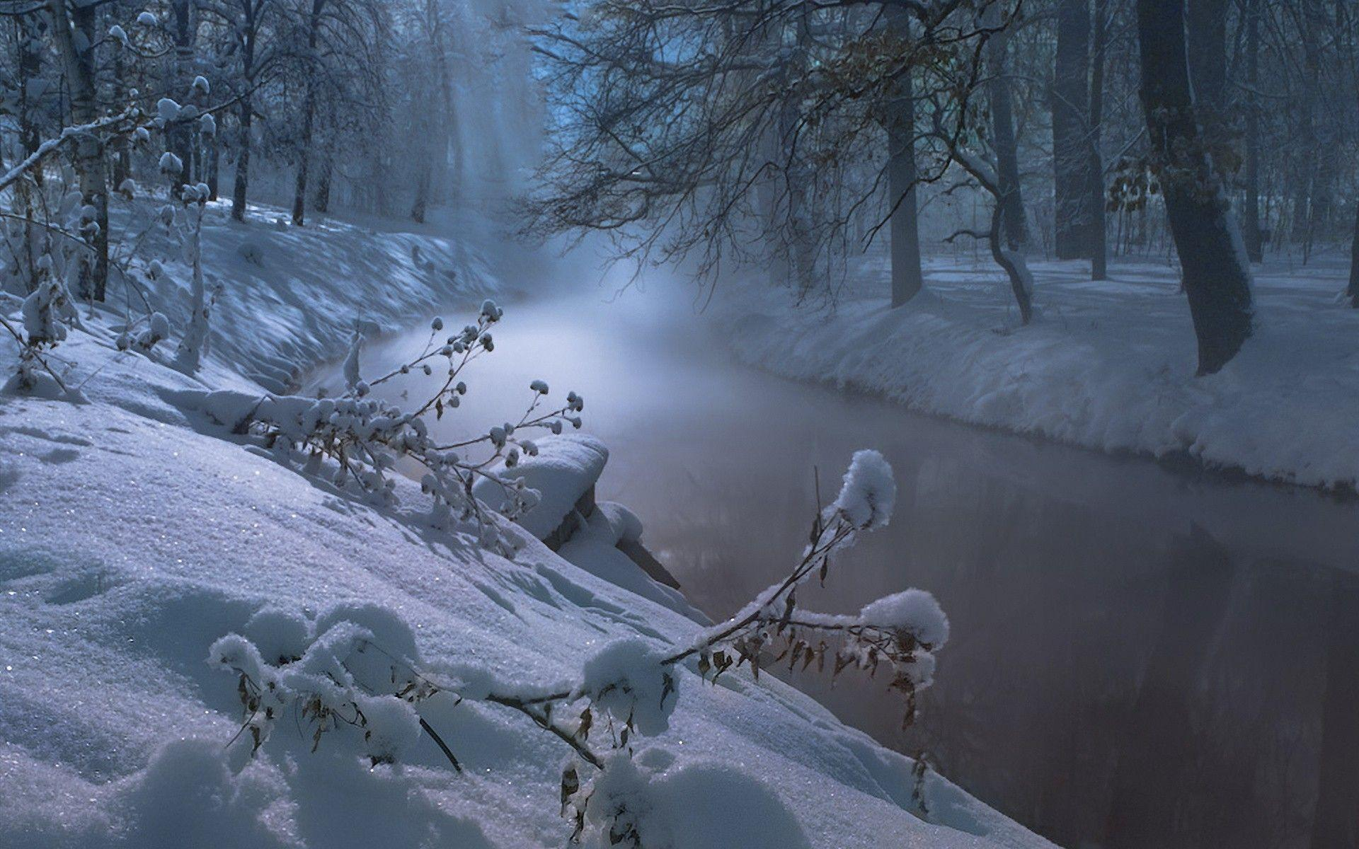 Wallpapers For > Widescreen Winter Night Wallpapers