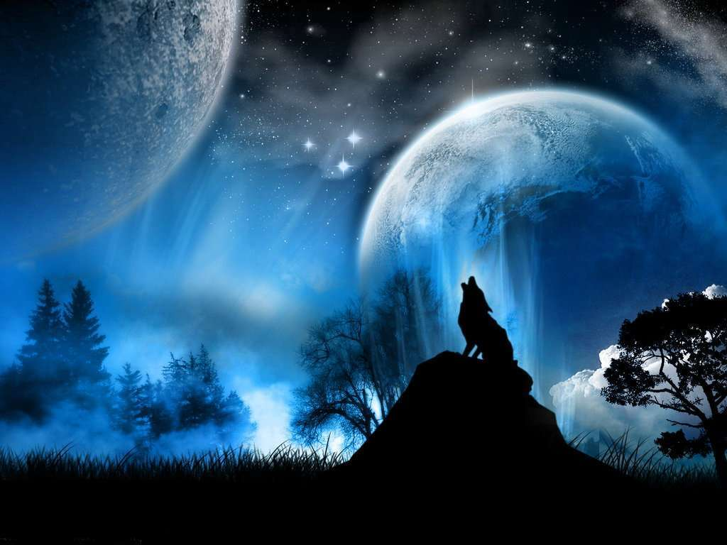Wallpapers For Cool Backgrounds Of Wolves