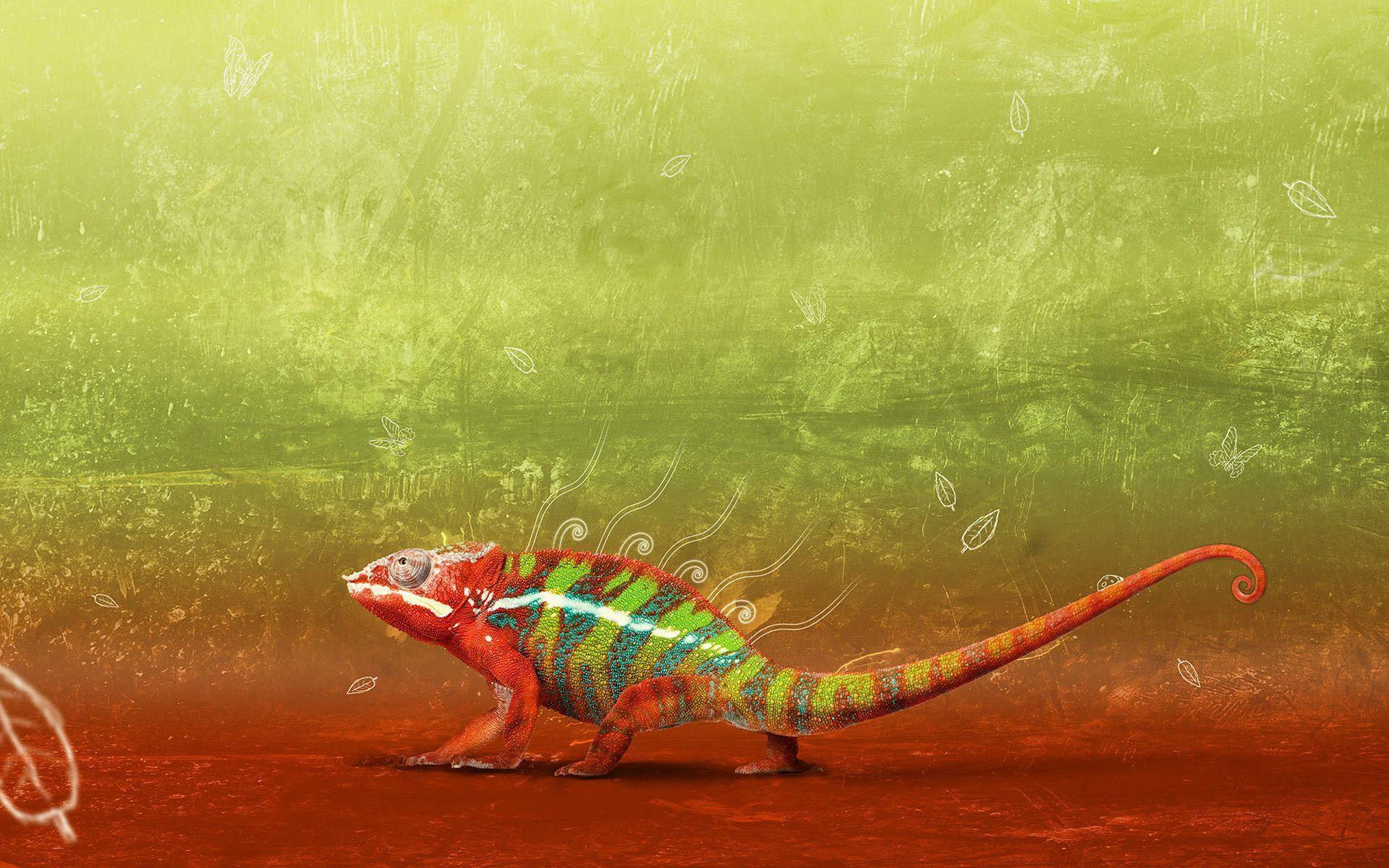 chameleon wallpaper 1920x1200 - photo #3