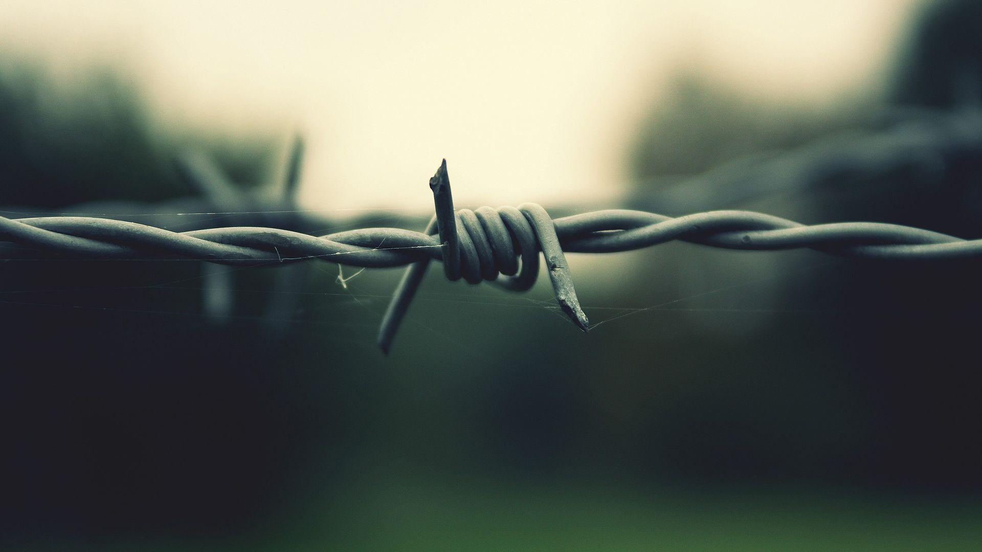Barbed Wire Wallpaper Amazing Decoration 615716 Decorating Ideas