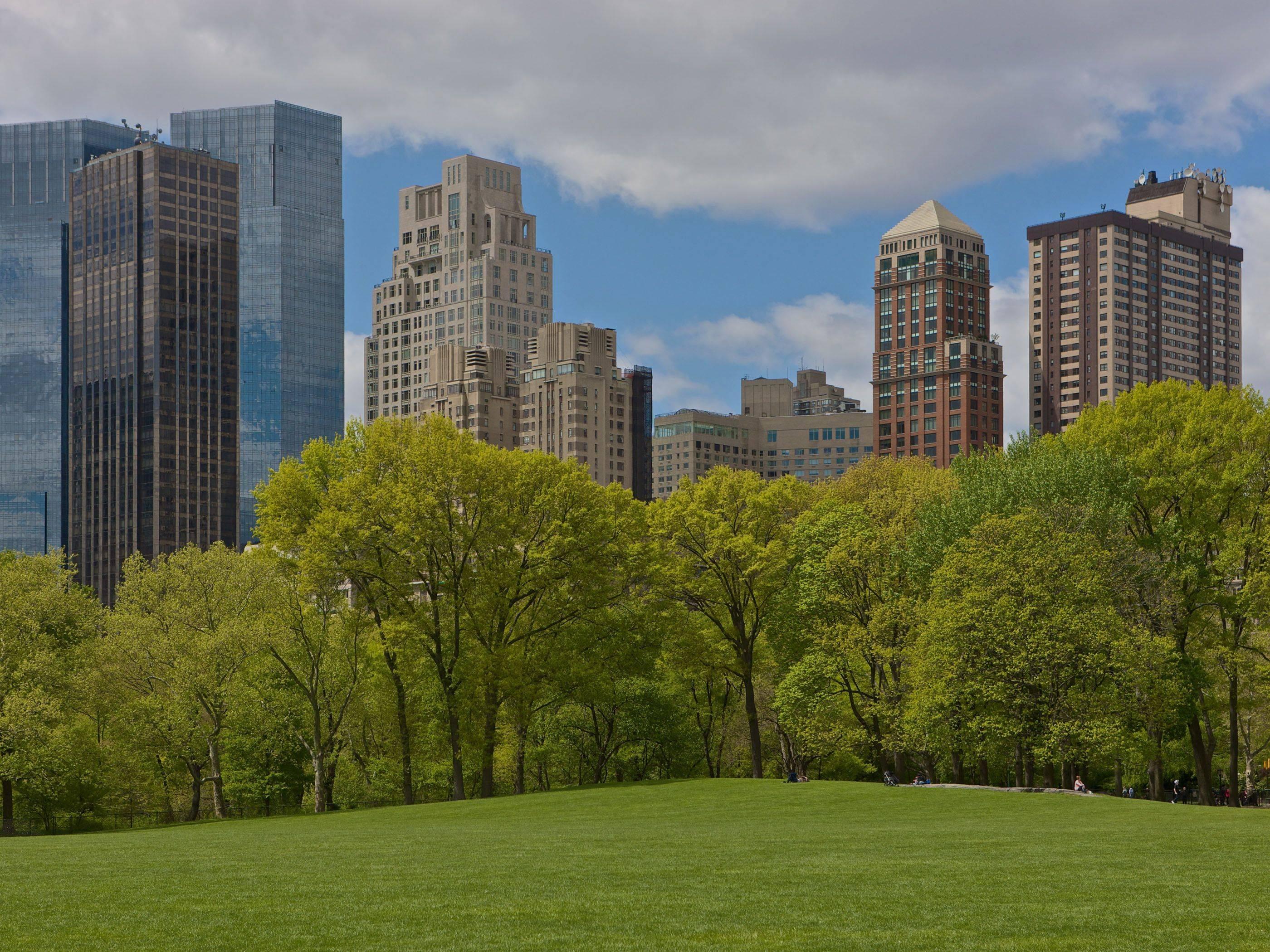 Central Park Backgrounds