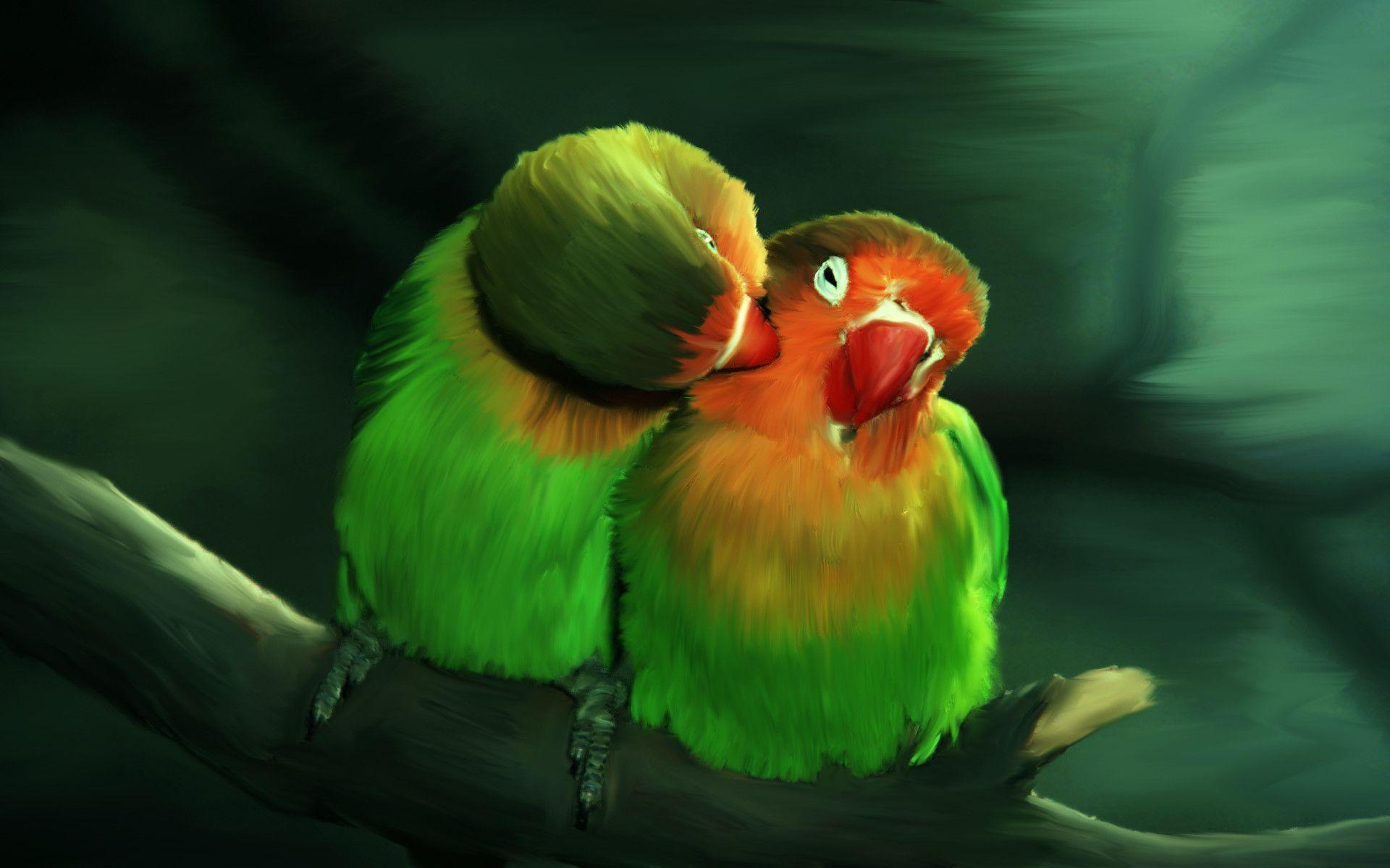 Love Birds Images For Wallpaper : Love Bird Wallpapers - Wallpaper cave