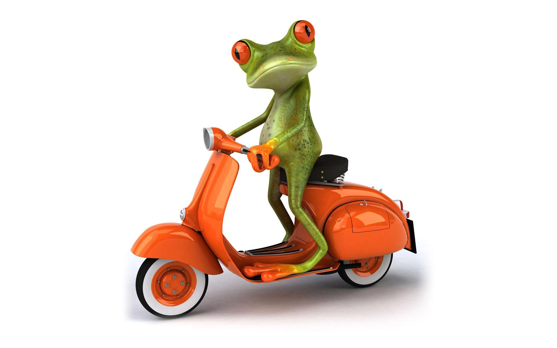 3D Frog & Vespa HD Wallpapers