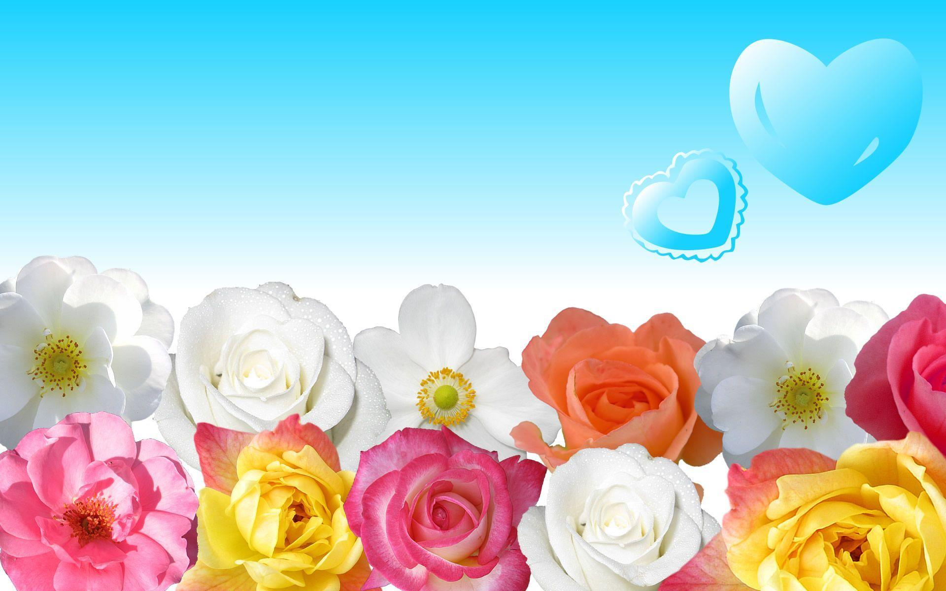 Flower Pictures Wallpapers - Wallpaper Cave