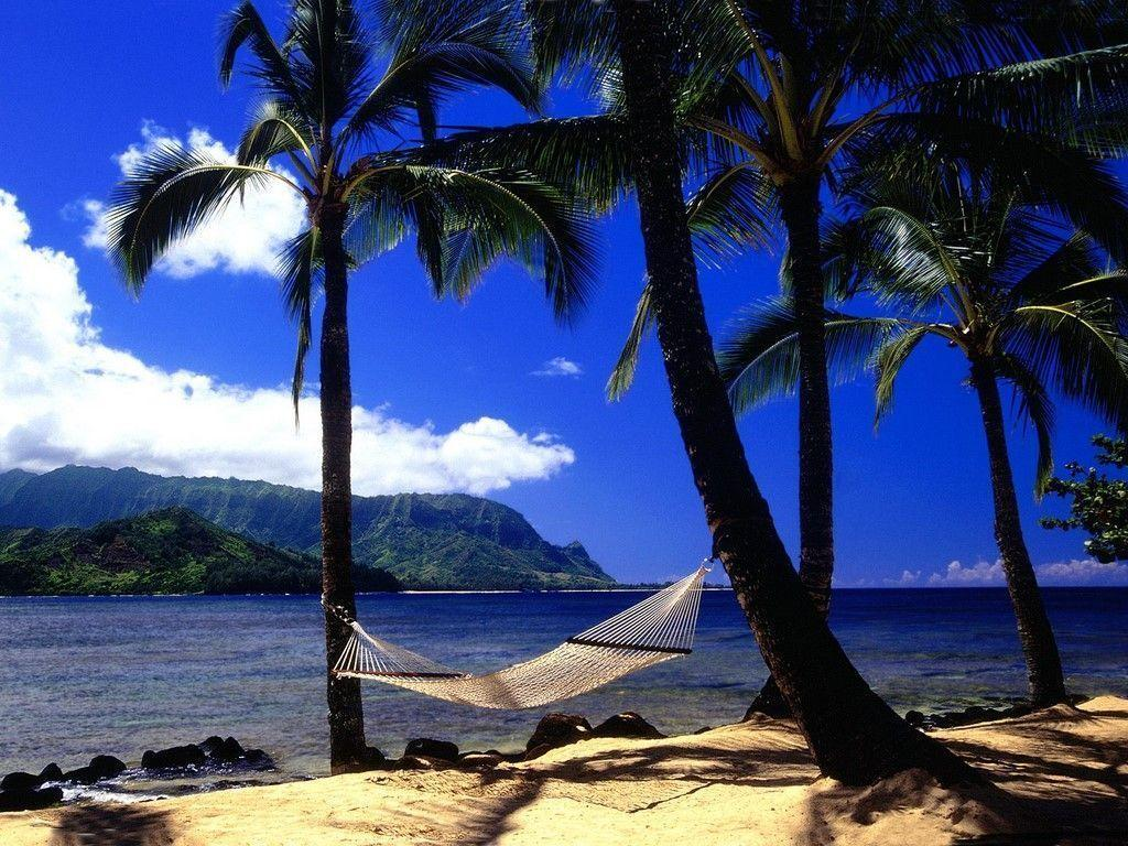 Free Hawaiian Wallpapers