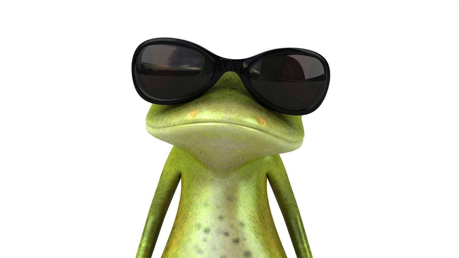 Funny Frog Wallpapers Wallpapers computer