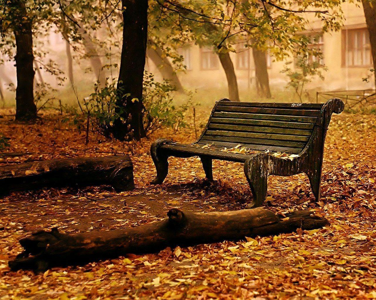 Fall HD Wallpapers | Fall Pictures | Autumn Wallpaper | Cool ...