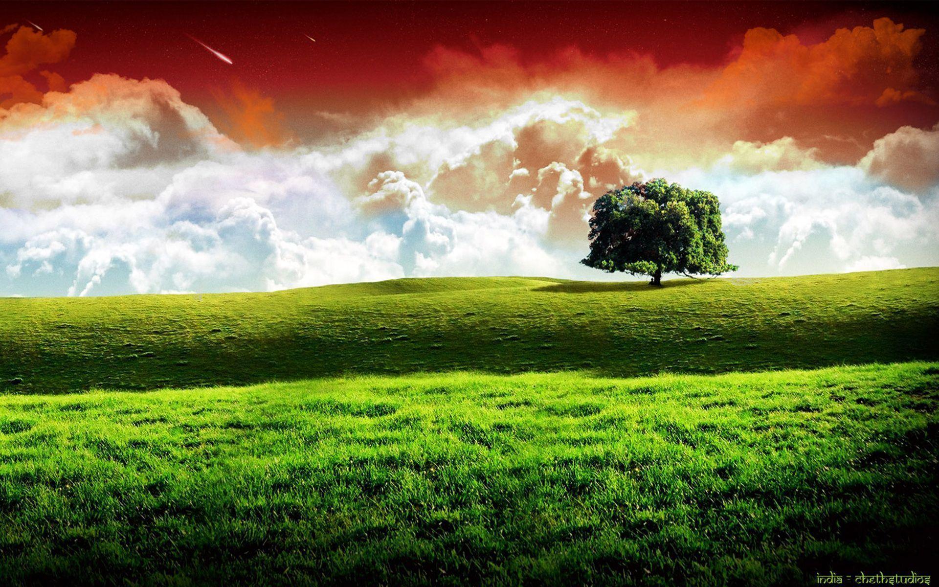 Indian Flag wallpaper - 211176