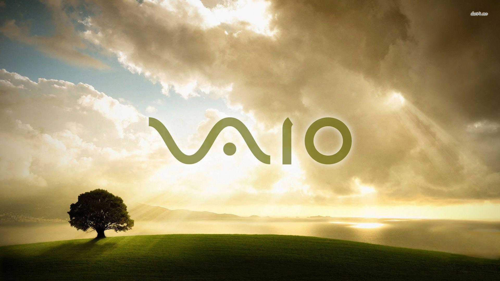 vaio wallpapers wallpaper cave