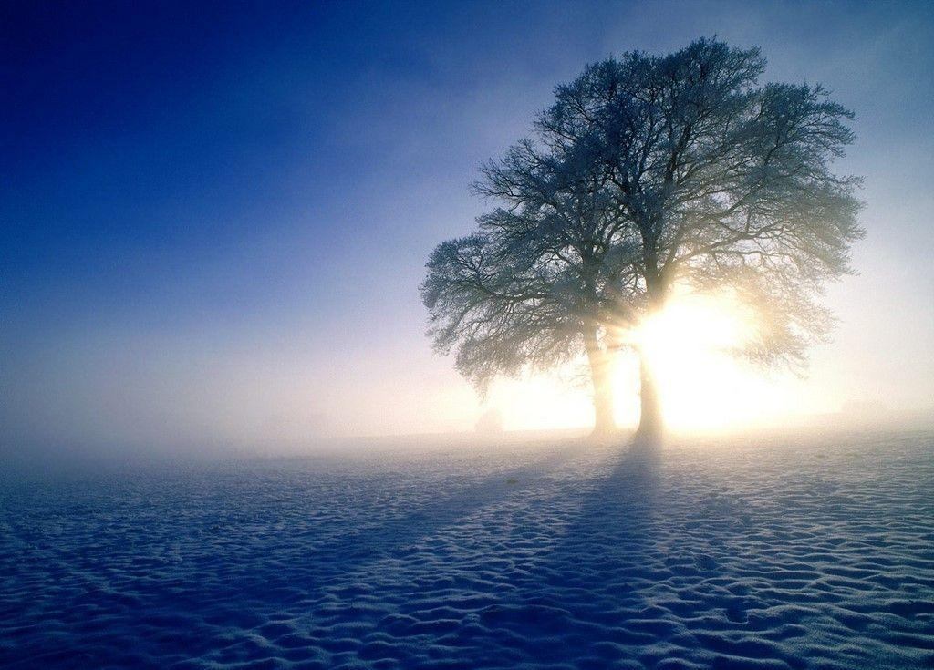 Winter Sunrise Wallpaper   Download HD Wallpapers