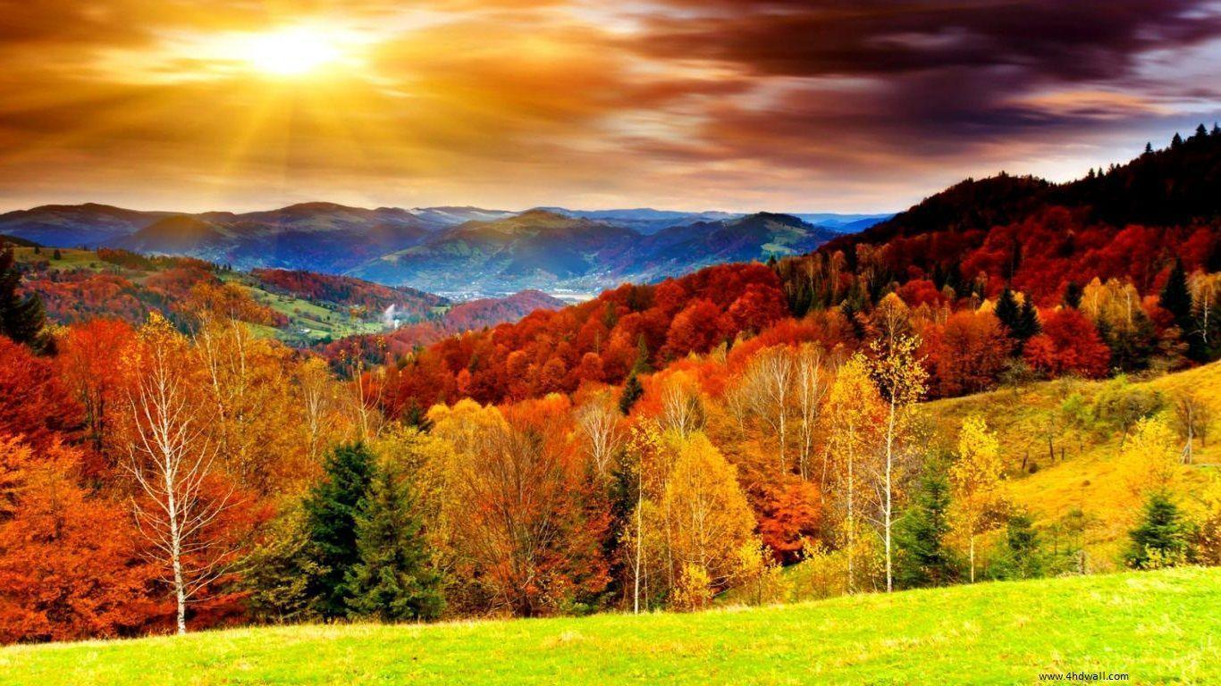 High Resolution Fall Wallpaper: Autumn Wallpapers HD