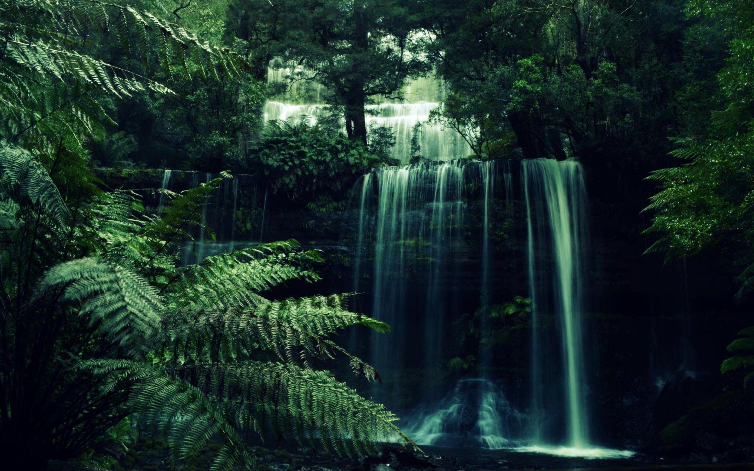 Jungle Waterfall Wallpaper Hd: Forest Waterfall Wallpapers