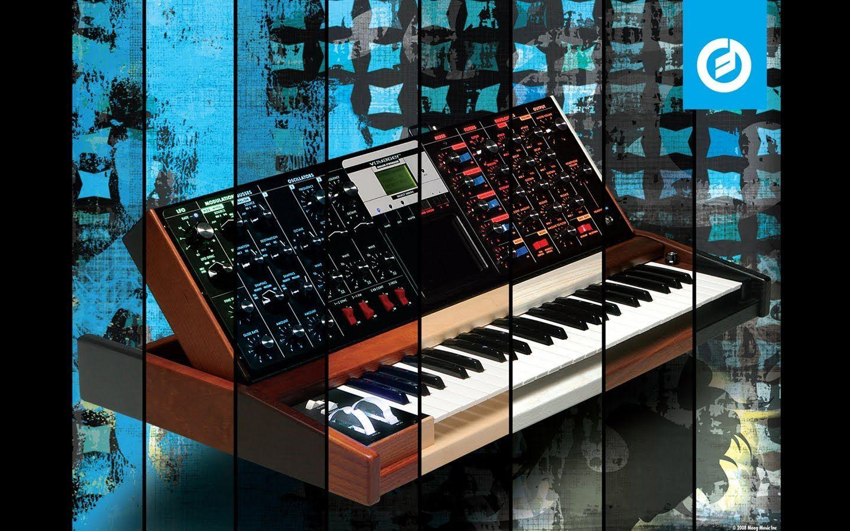 moog modular hd extraordinary - photo #26