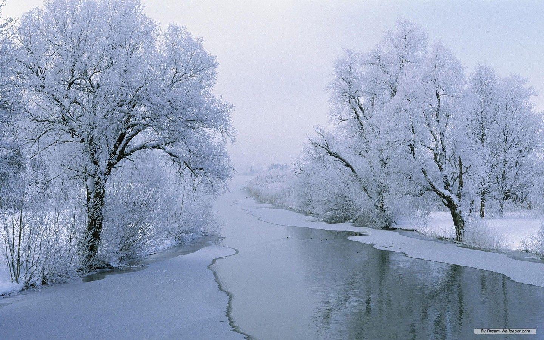 Winter Wonderland Desktop Wallpapers - Wallpaper Cave