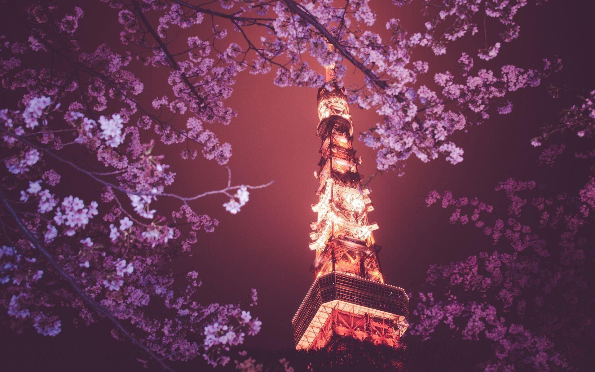 Tokyo Tower HD Wallpaper #20052) wallpaper - Wallatar.com