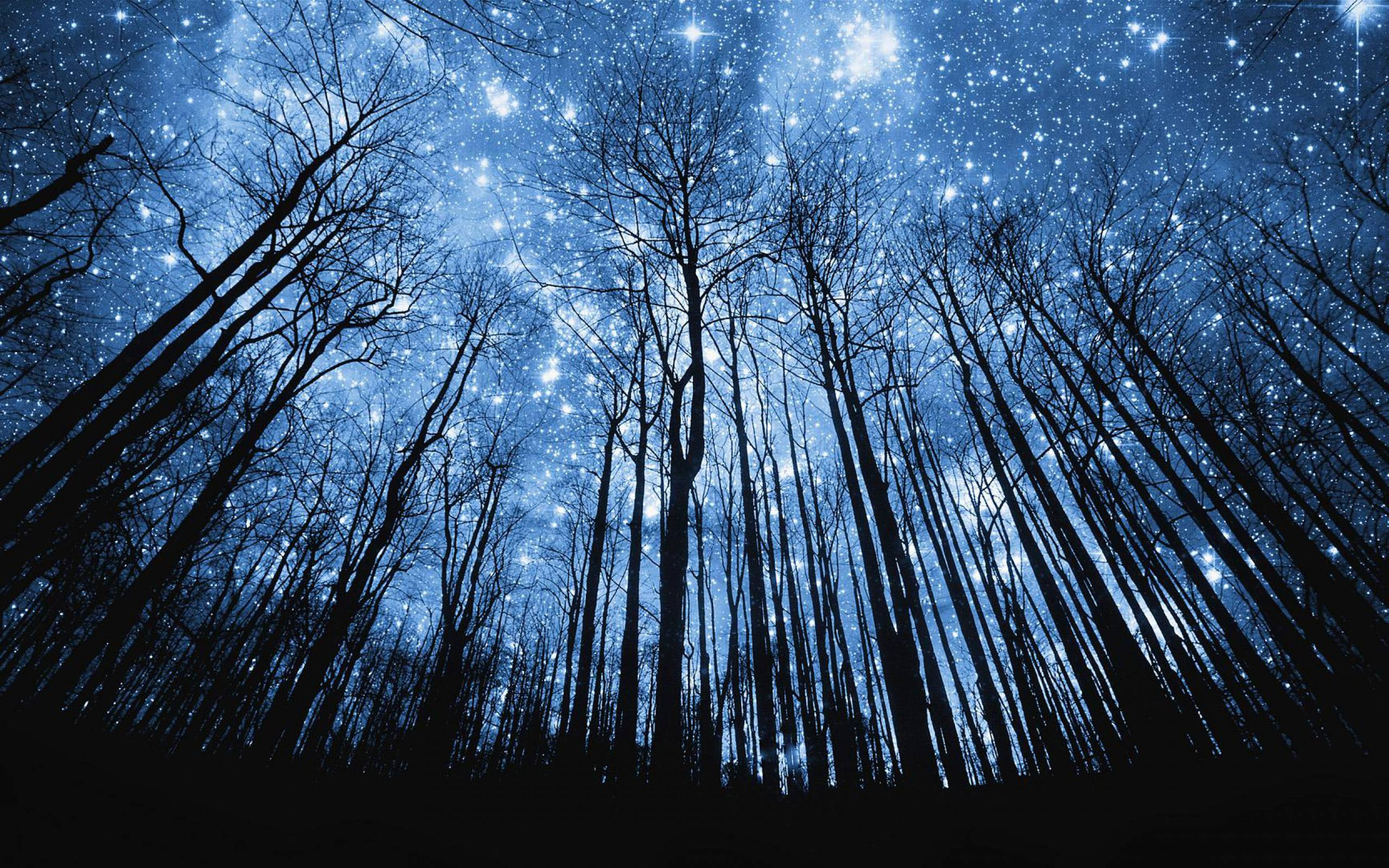 Starry Sky Wallpapers
