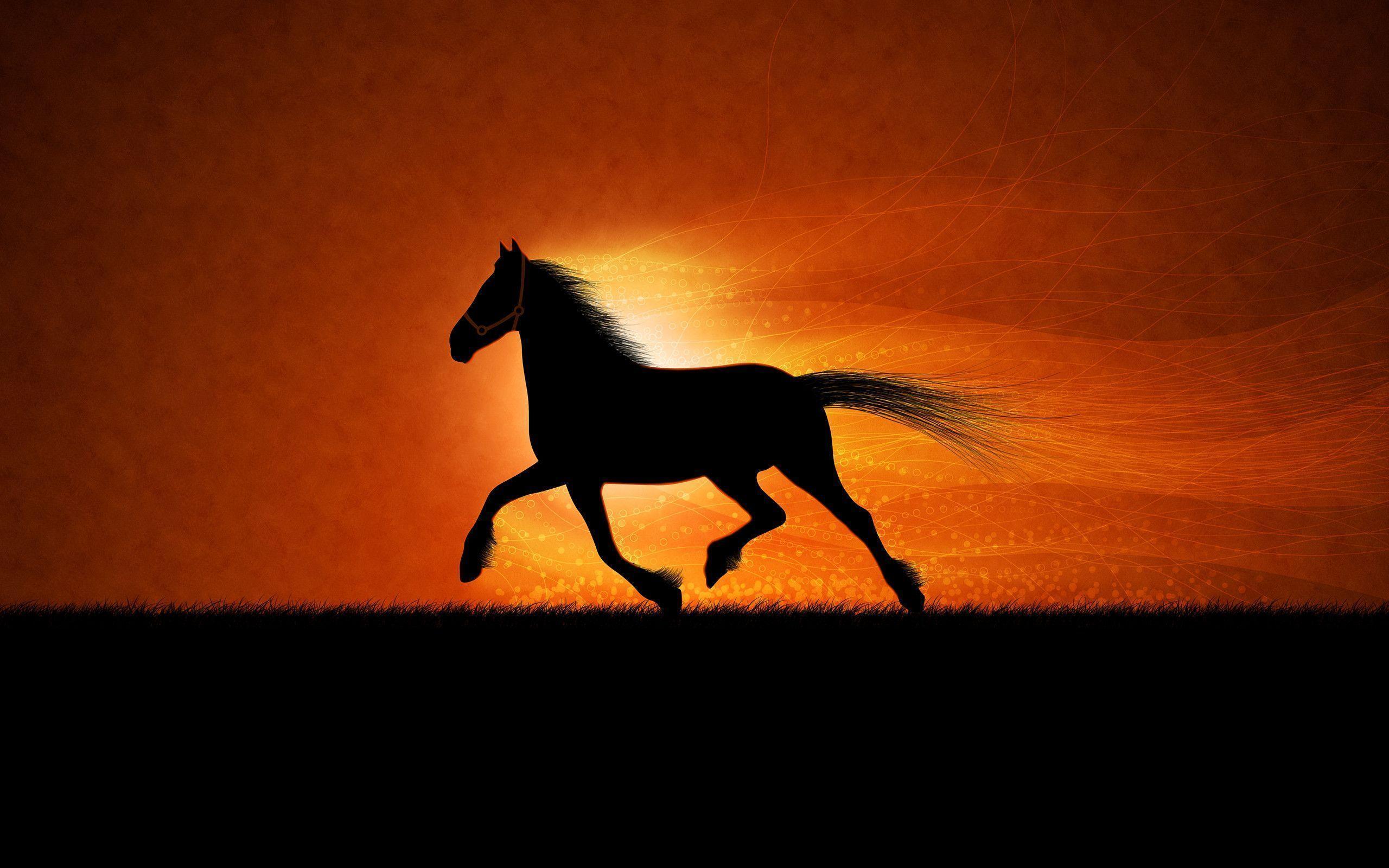 Running Horse Wallpapers Hd 2560x1600PX ~ Wallpaper Hores #6146