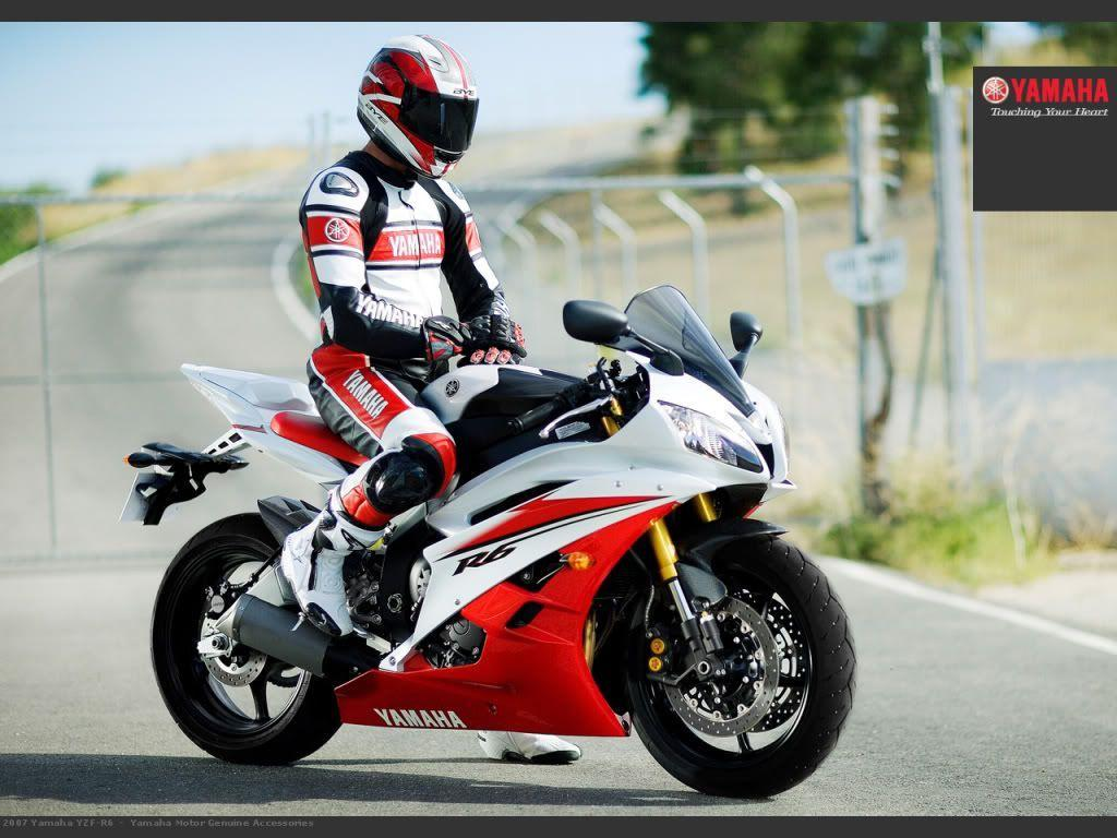 Yamaha R6 White Wallpapers 12412 Hd Wallpapers in Bikes