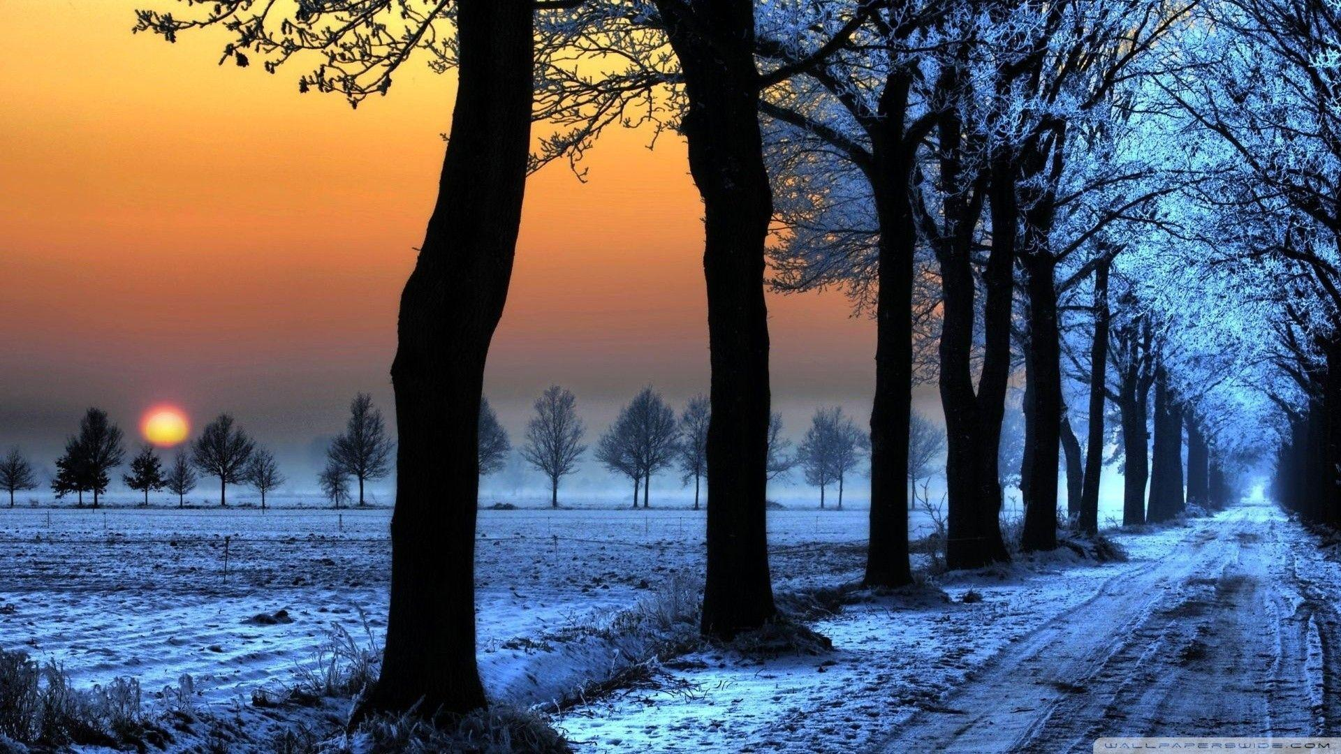 winter nature best wallpapers ever - photo #34